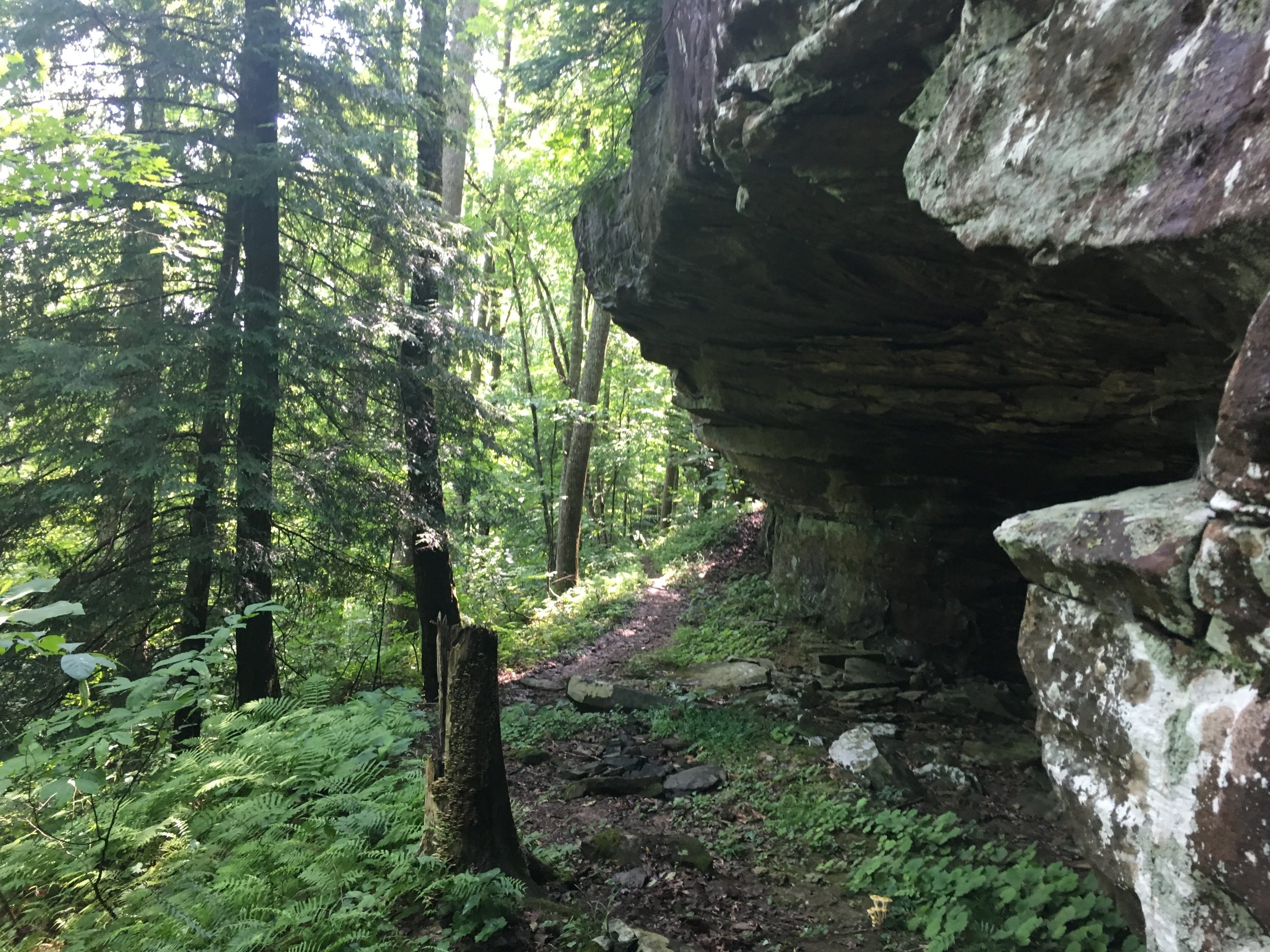 Beautiful rock features above Margaret Hollow