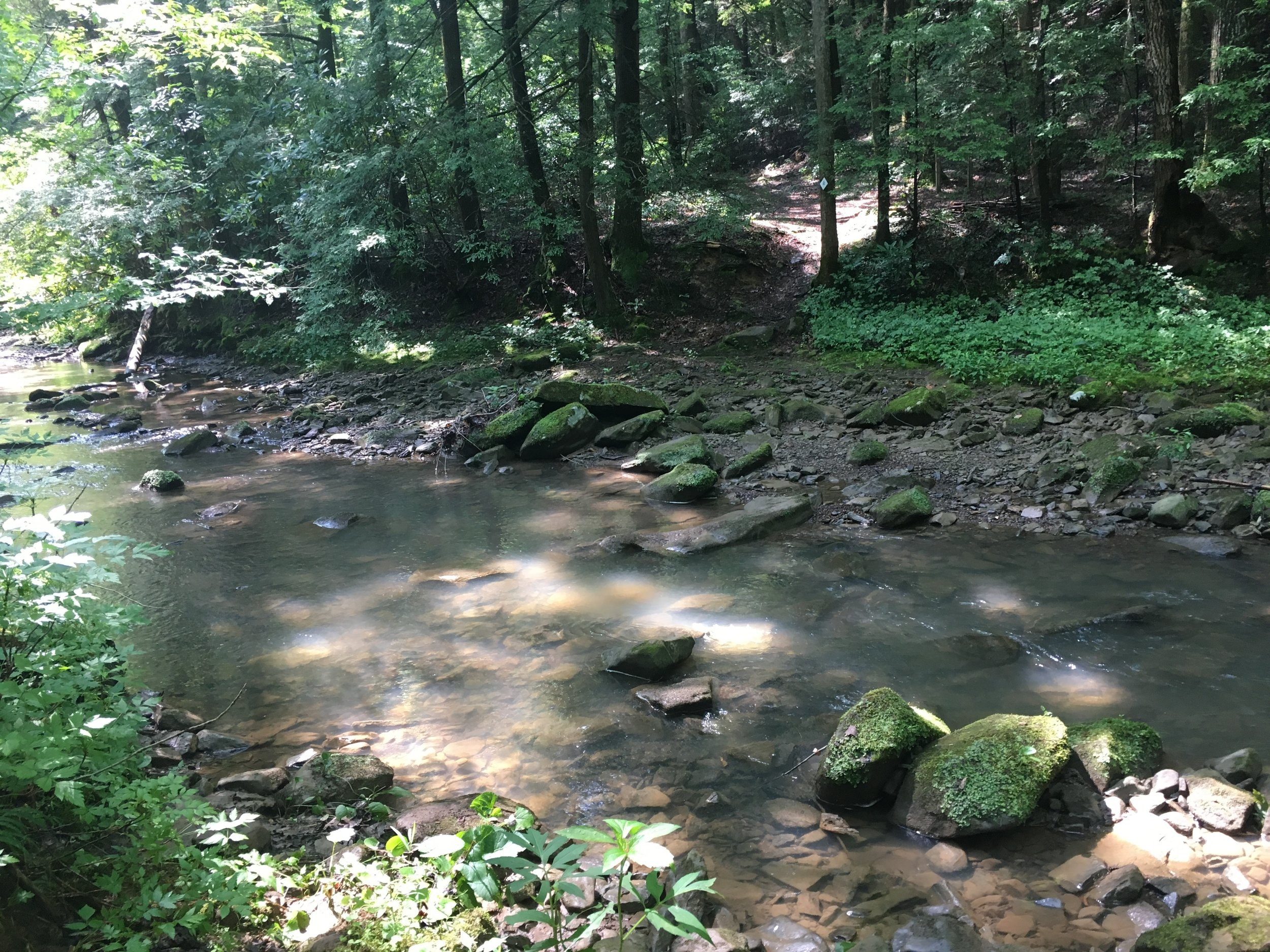 Crossing the creek at Margaret Hollow