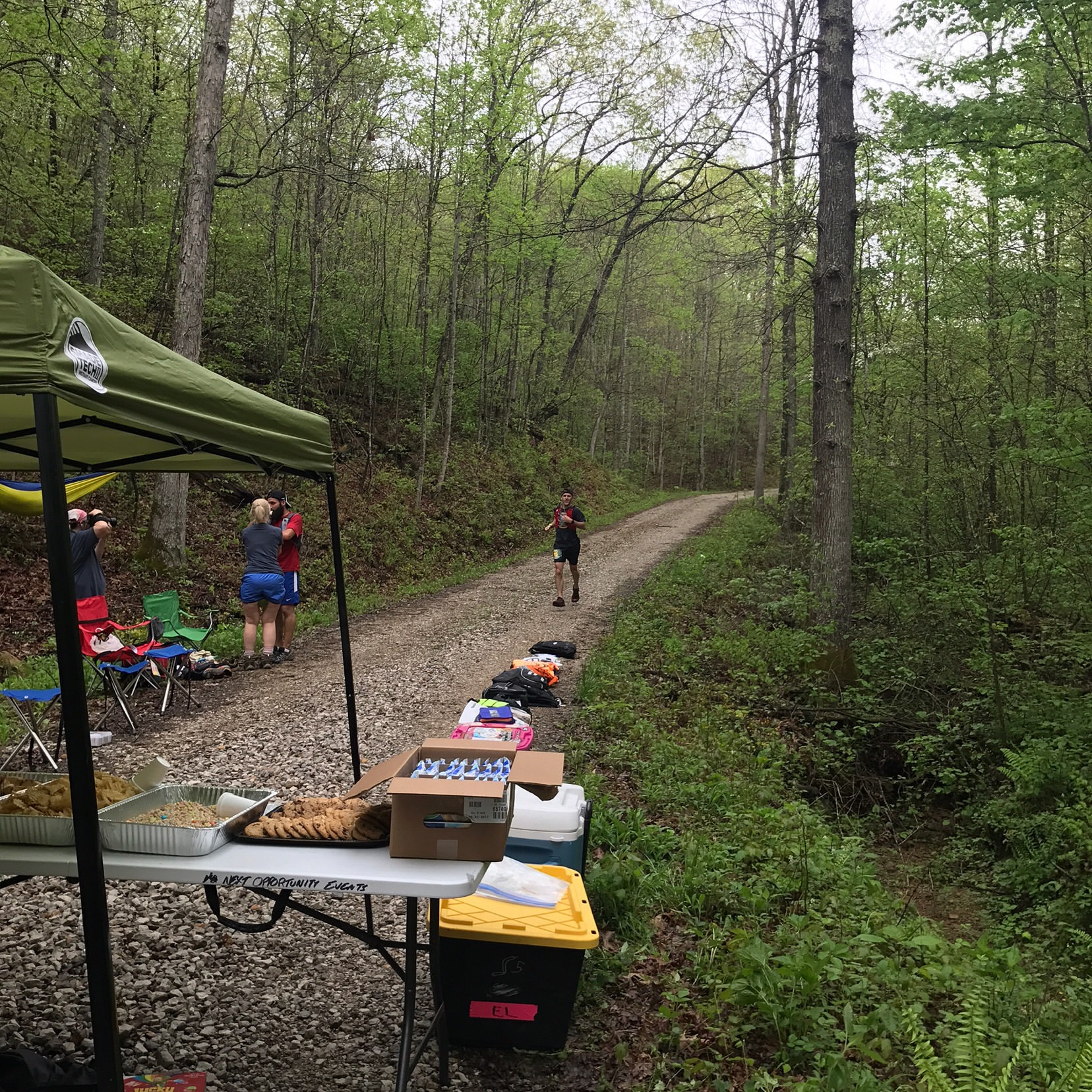 2017 Big Turtle runners descending the hill at the Fresh Prince aid station along Elk Lick Road.