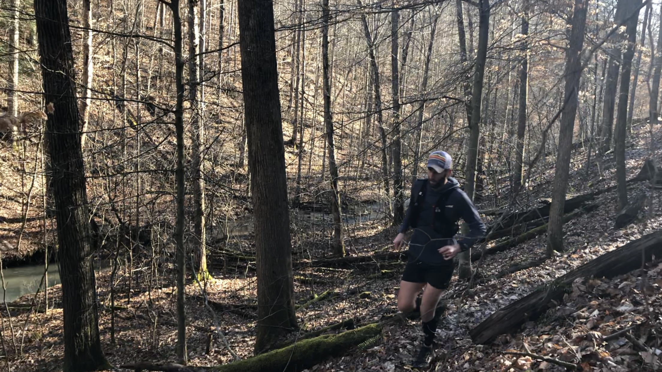 I won't soon forget this run or what I learned in that forest.