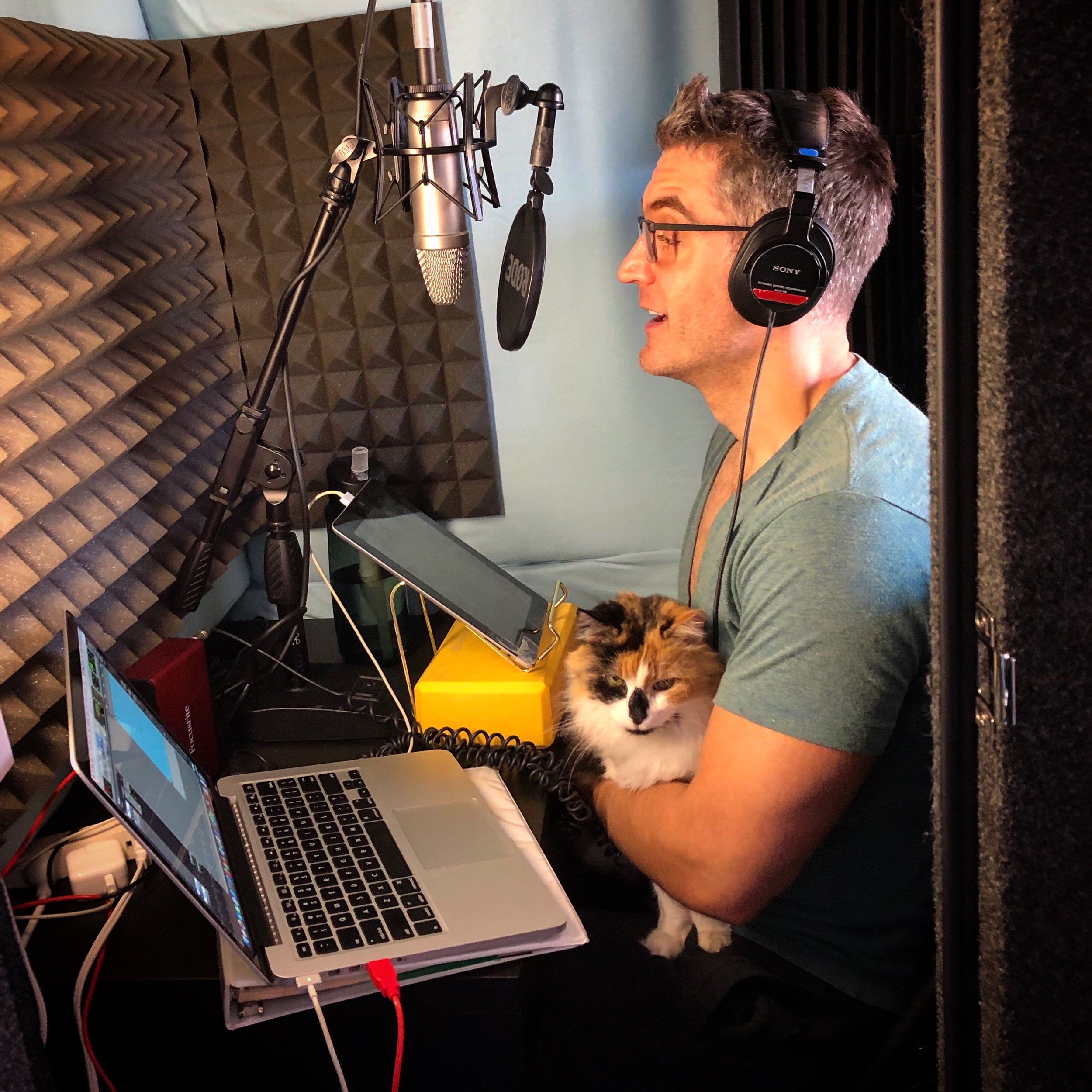 Cat not included in final recording