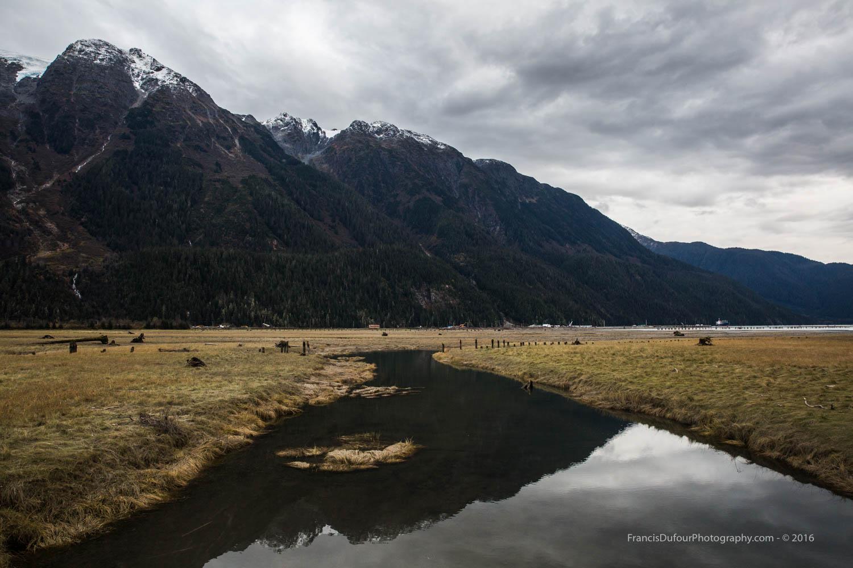 Bear River Estuary