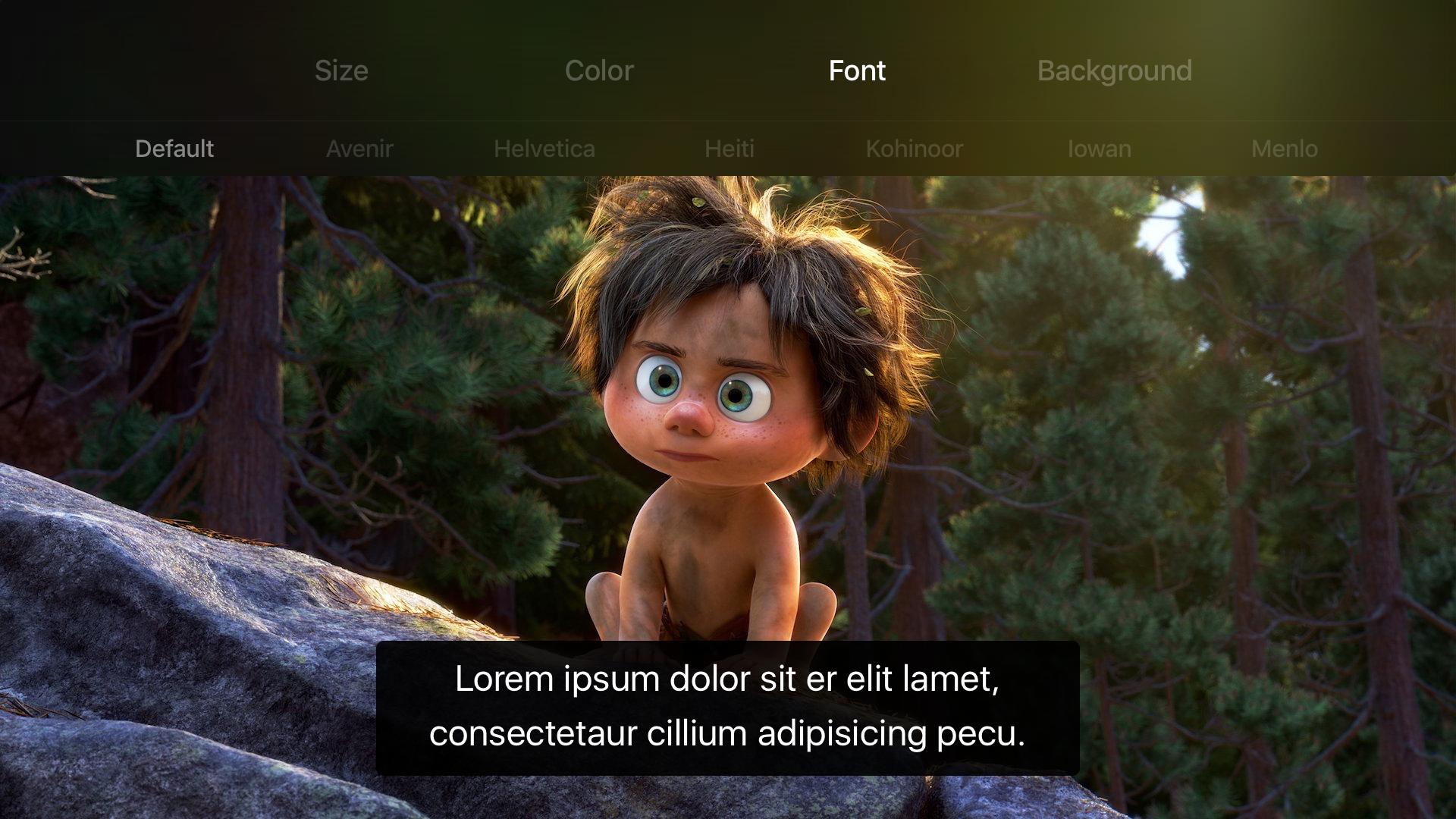 Setup subtitles