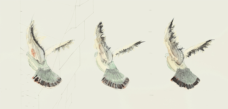 Villa Faenza pigeons.  Watercolour   2015  Study for birds in an Italian garden