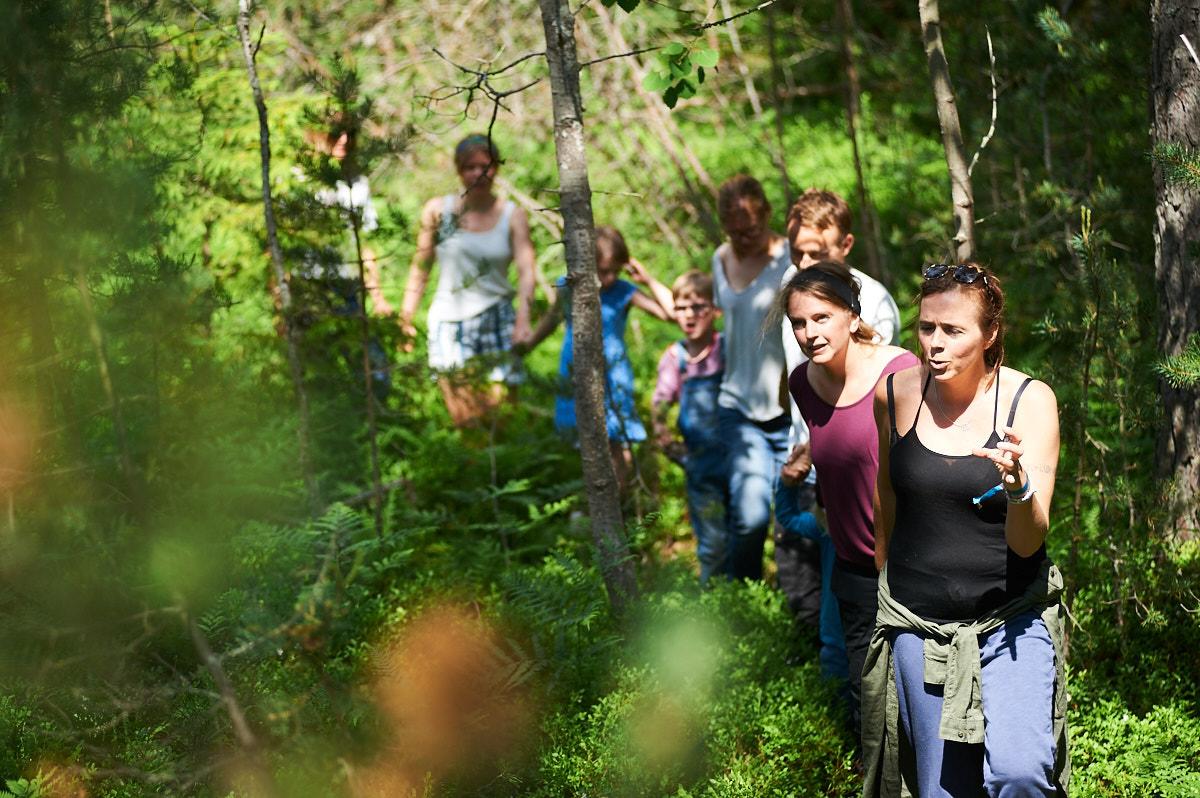 skogslek-langrad-ingaro-skog.jpg