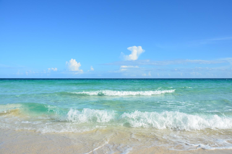 waves WO.jpg
