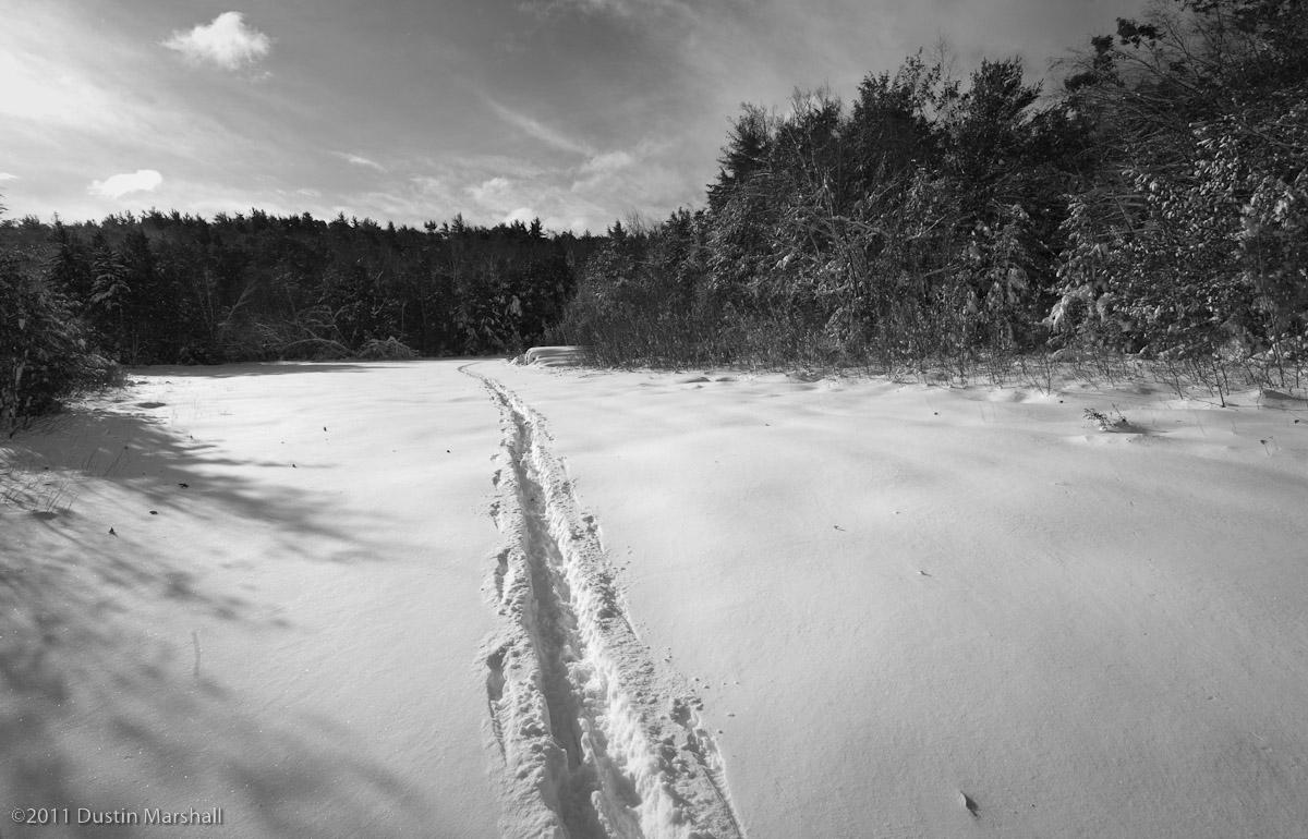 october_snow-3.jpg