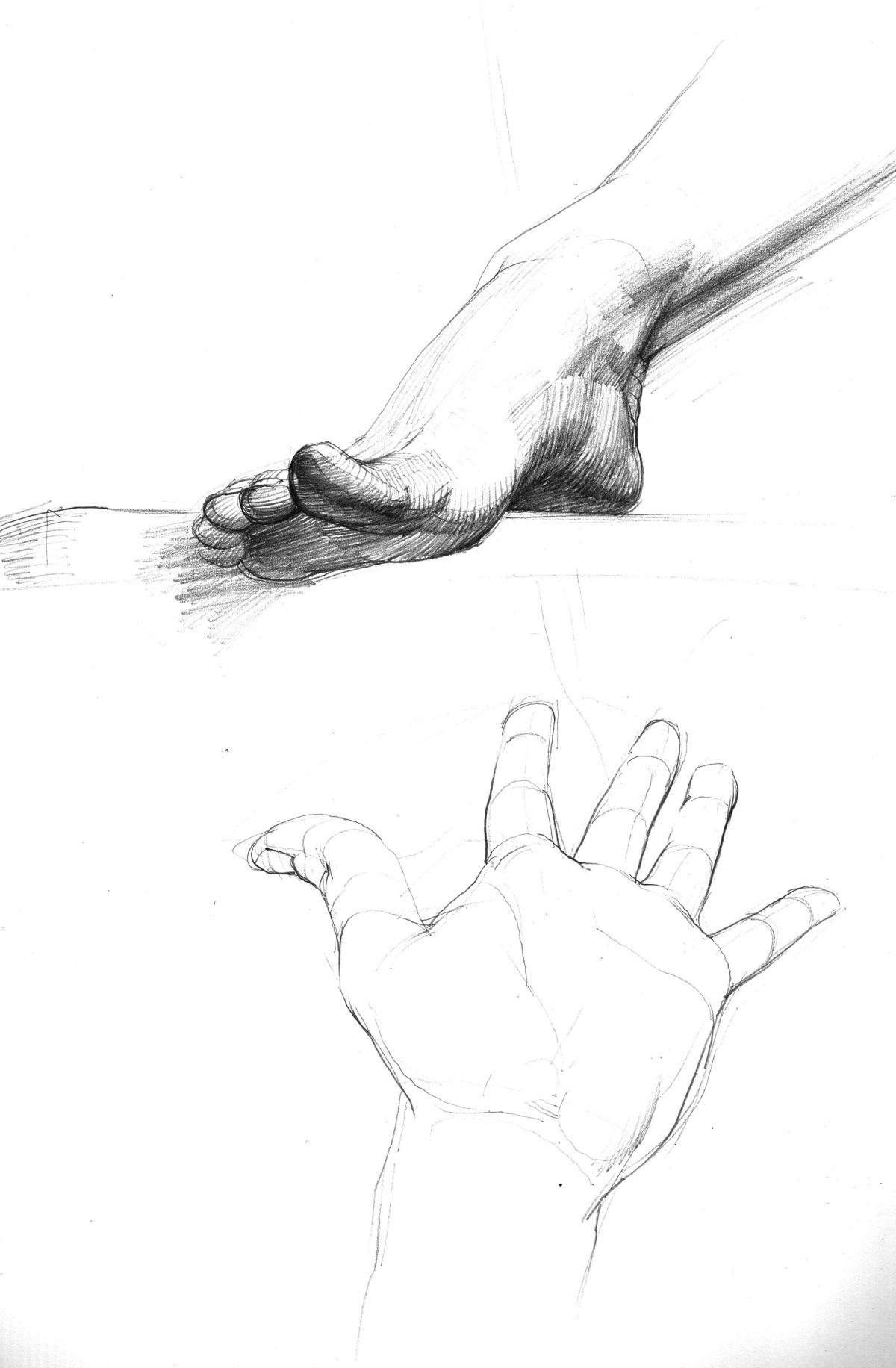 hand and foot.jpeg