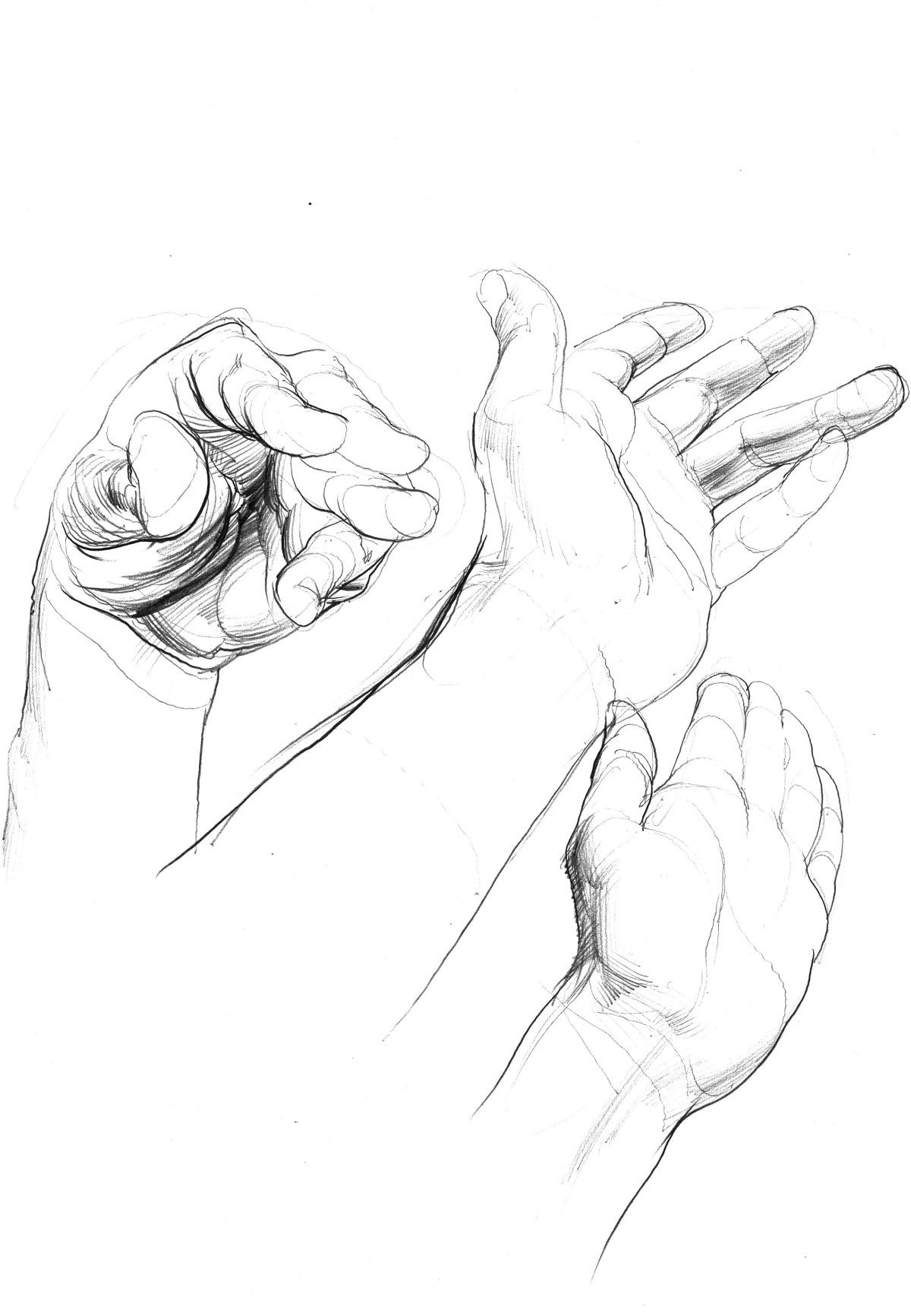 hand studies 4.jpeg