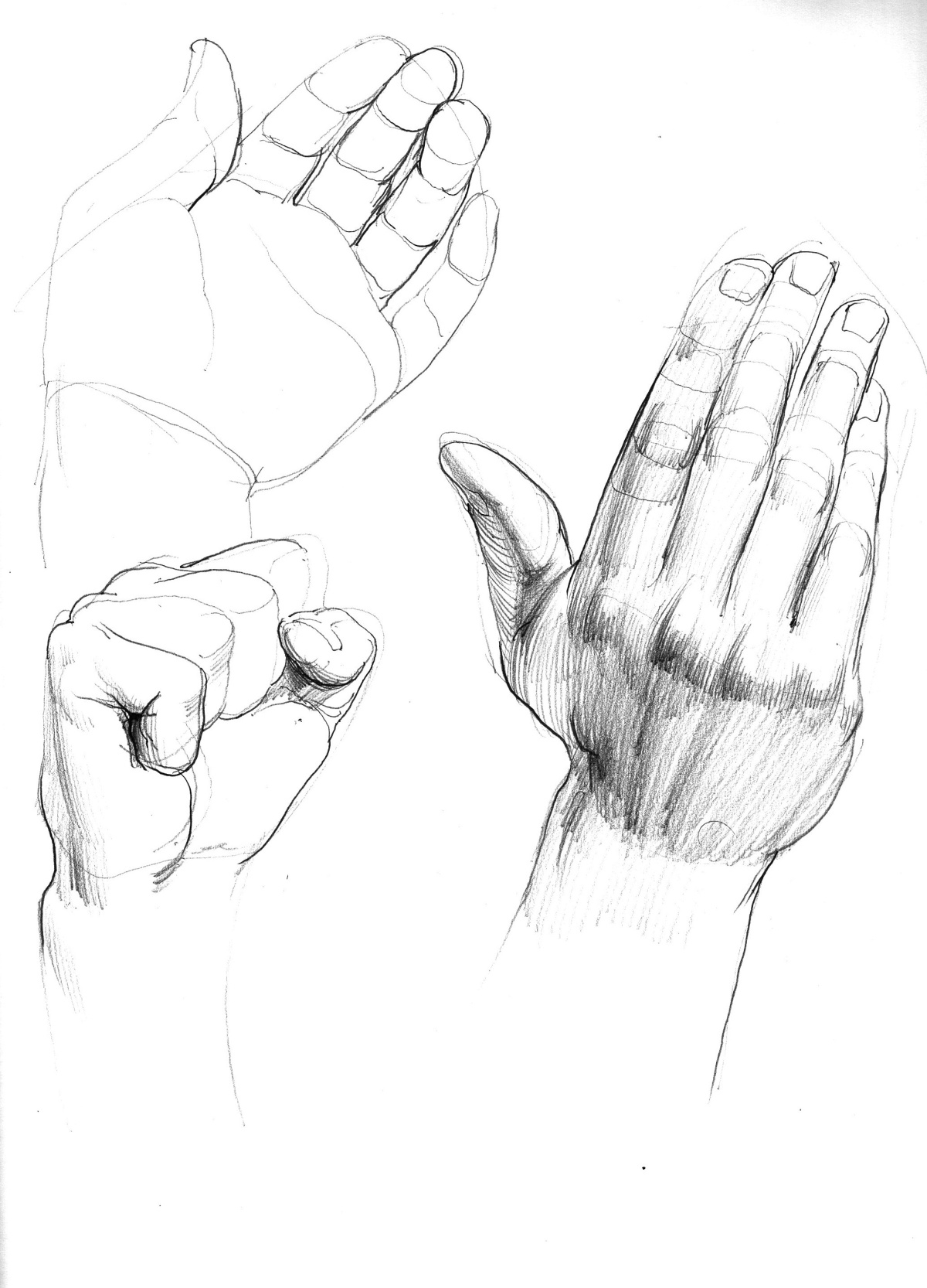 hand studies copy.jpg