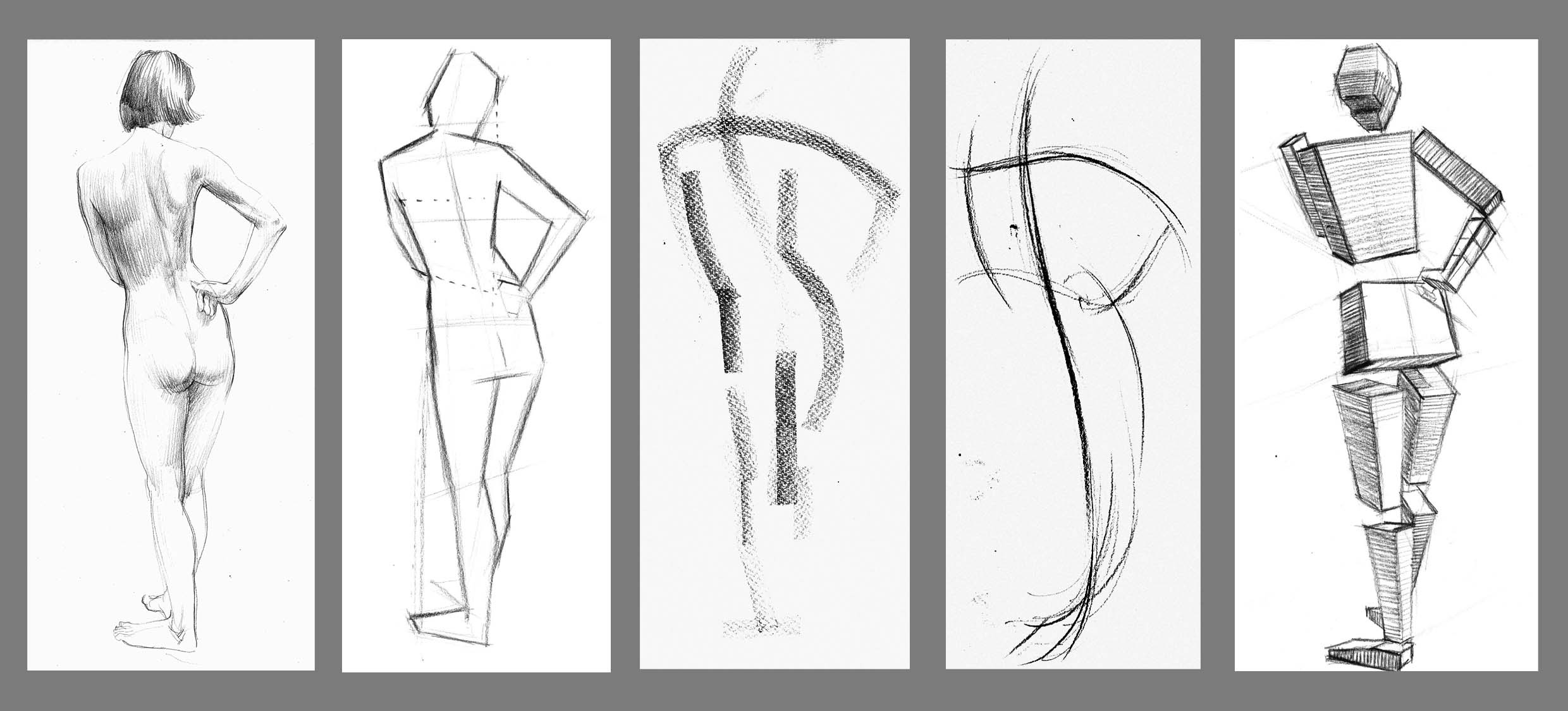 These images represent some of the aspects to be considered in life drawing: Accuracy, Design, Rhythm/animation, Form