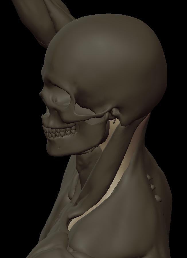 inner neck volume under 2.png