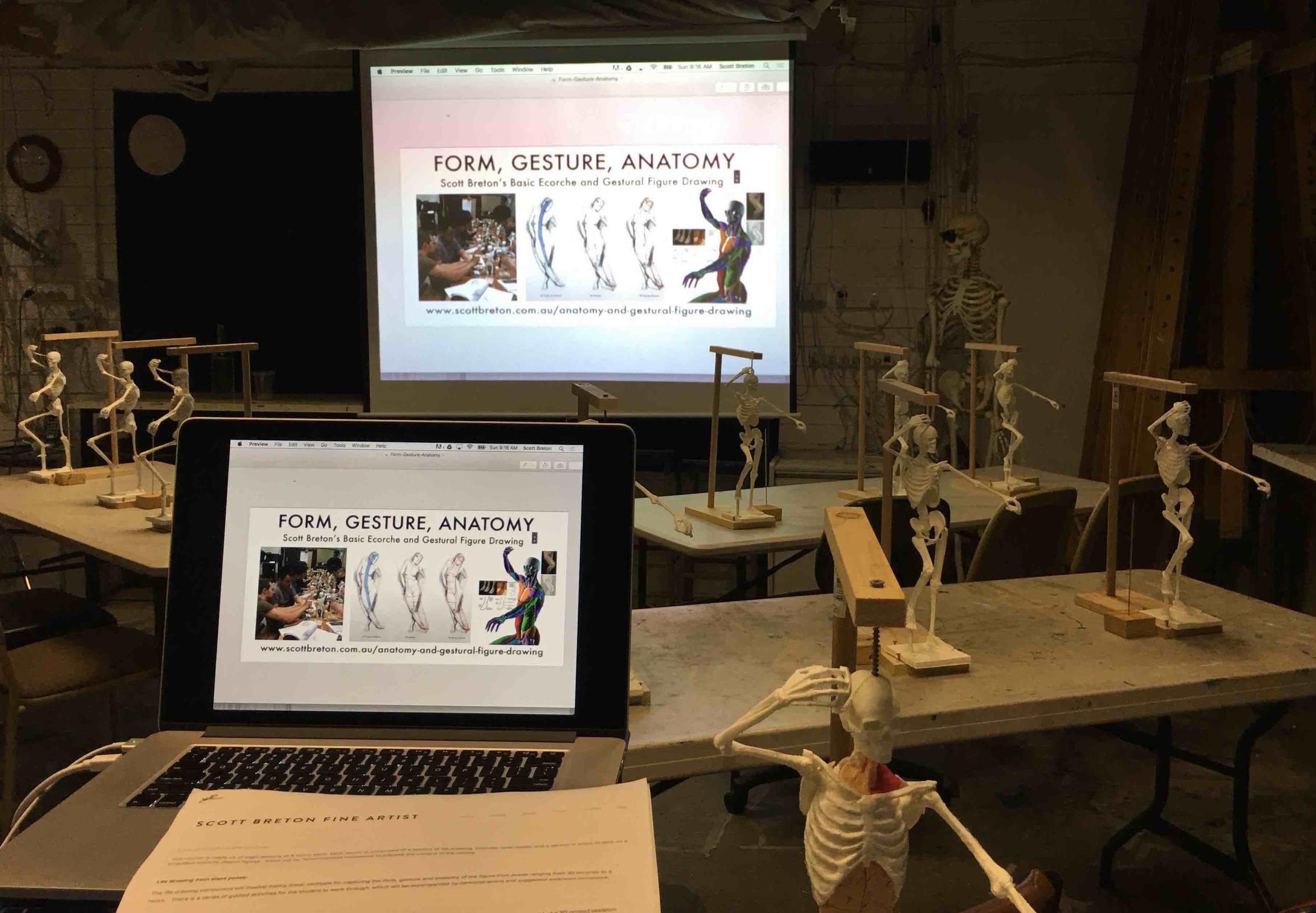 Scott Breton Form Gesture Anatomy Drawing course 2016workshop bris 2016 lesson 1 - 2.jpeg