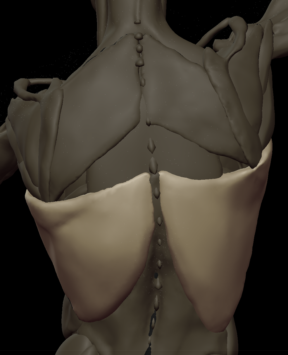 zzzz Lats 3.png