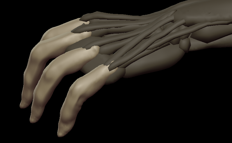 H fingers 1.png