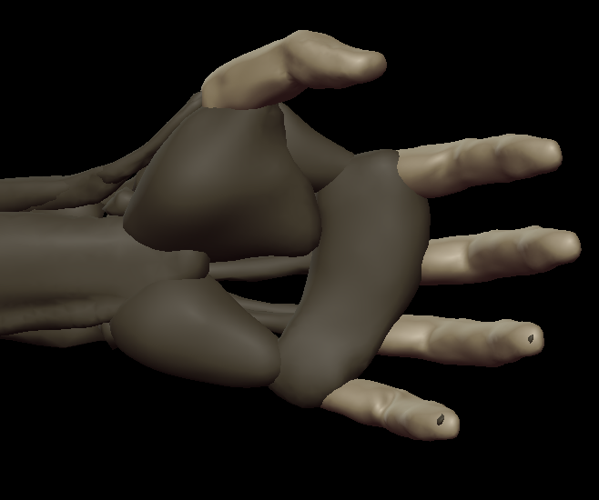 H fingers 3.png