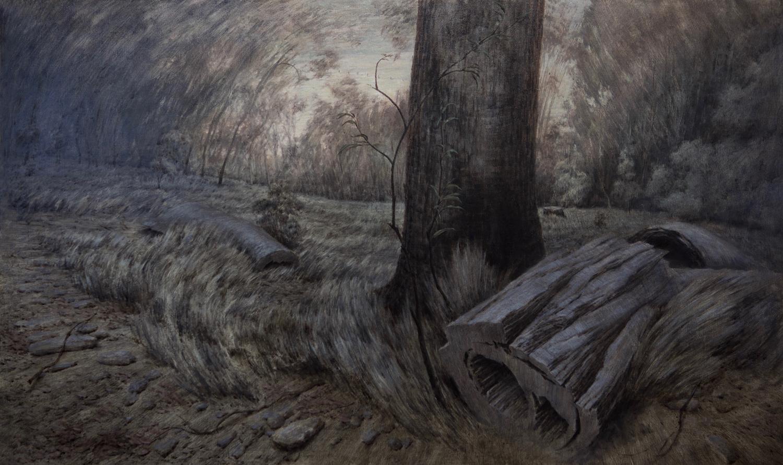 Fallen Timber
