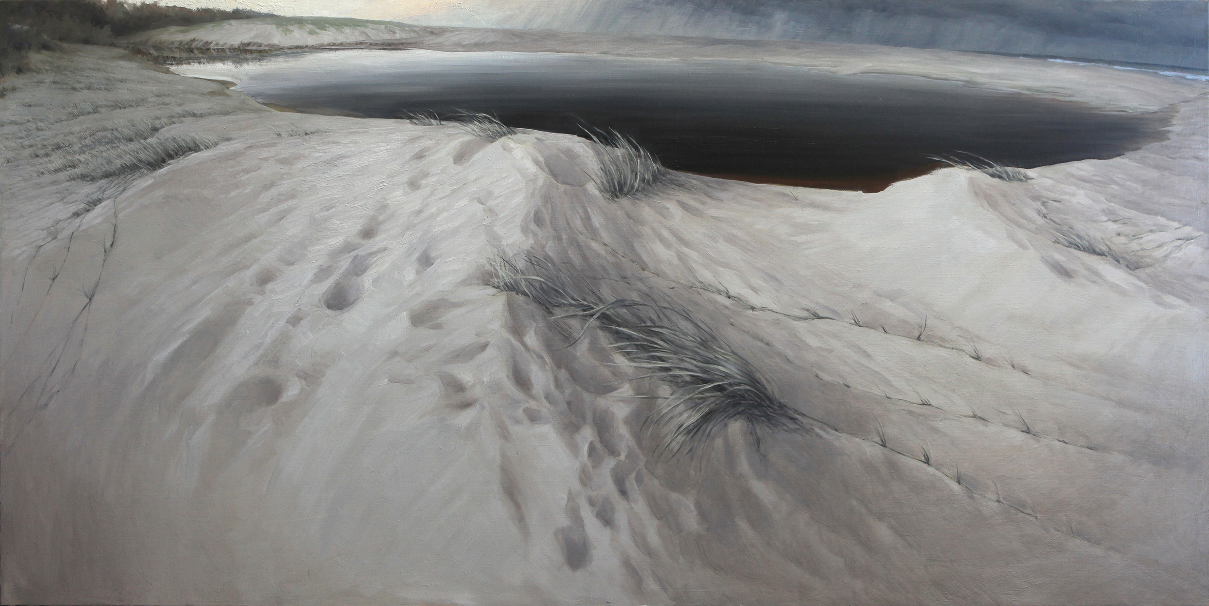 Black Water (Tea Tree Creek) 61 x 120 cm Oil on Linen
