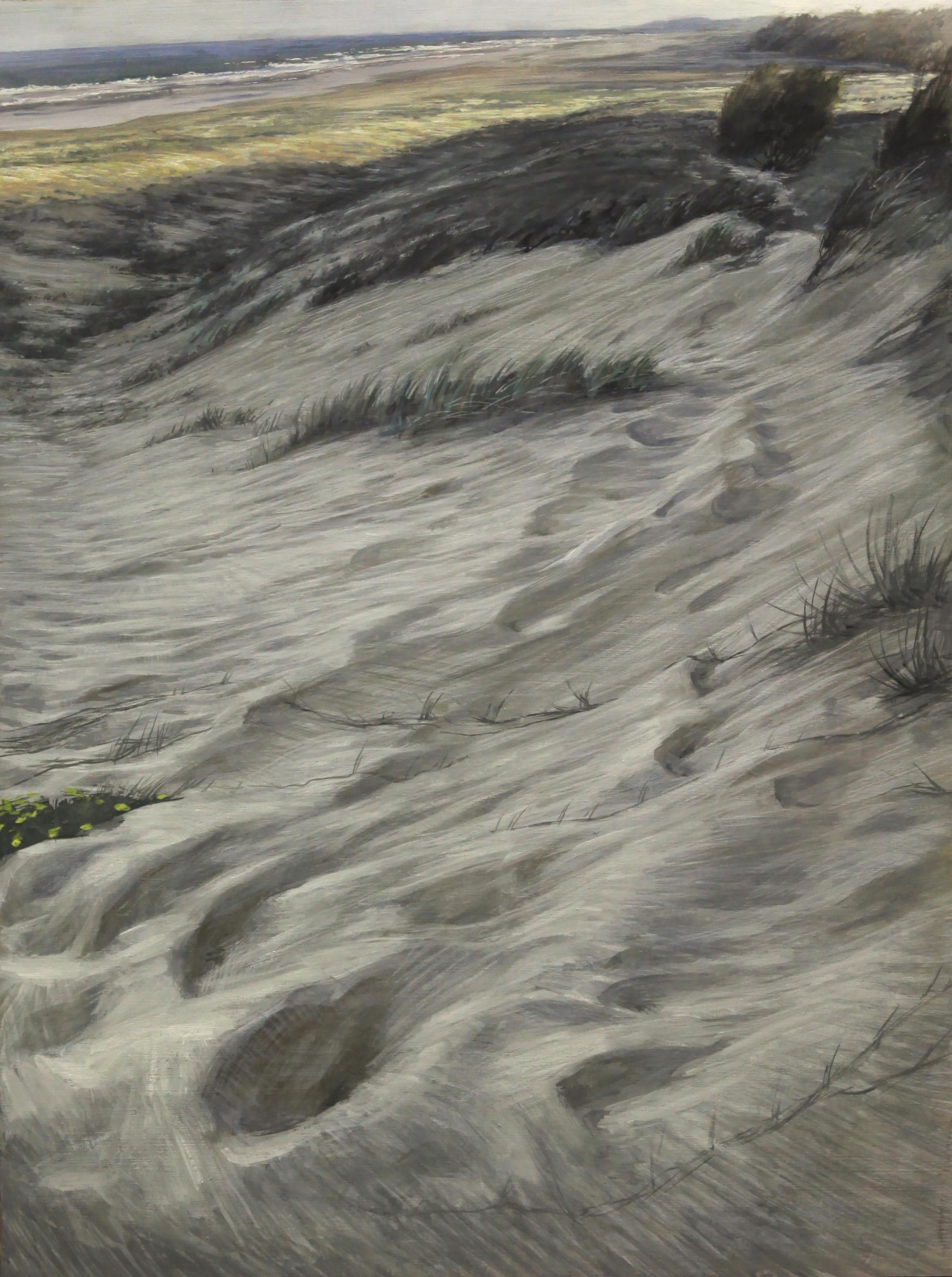 Dune Paths