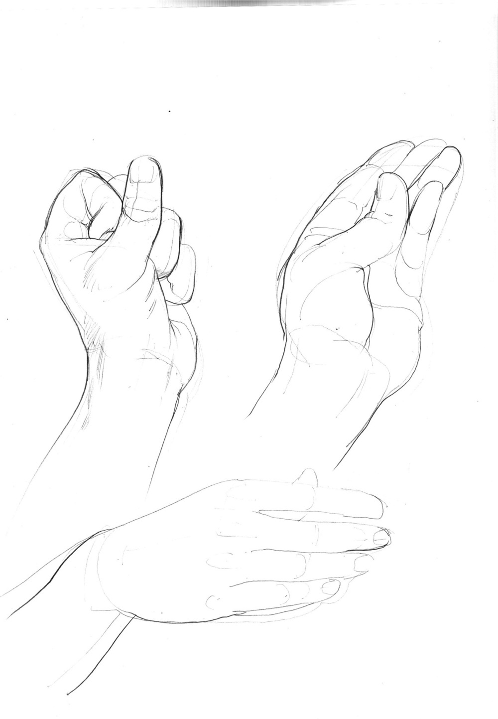 hand+studies+3.jpeg