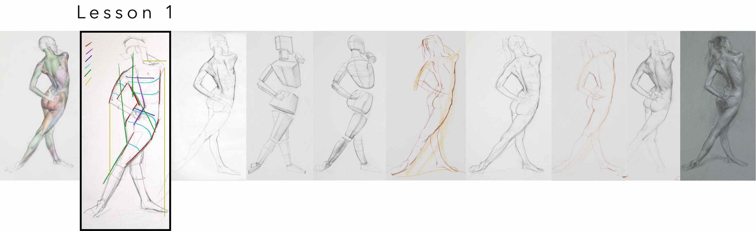 header lesson 1 scott breton form gesture anatomy life drawing course.jpg