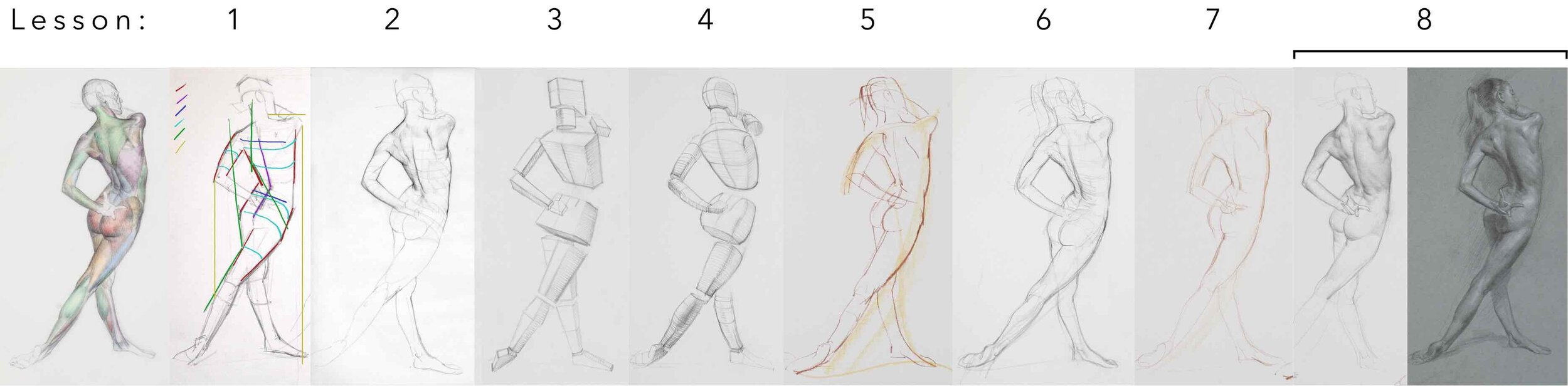 Header All Lessons Scott Breton Form Gesture Anatomy Life Drawing 2.jpg