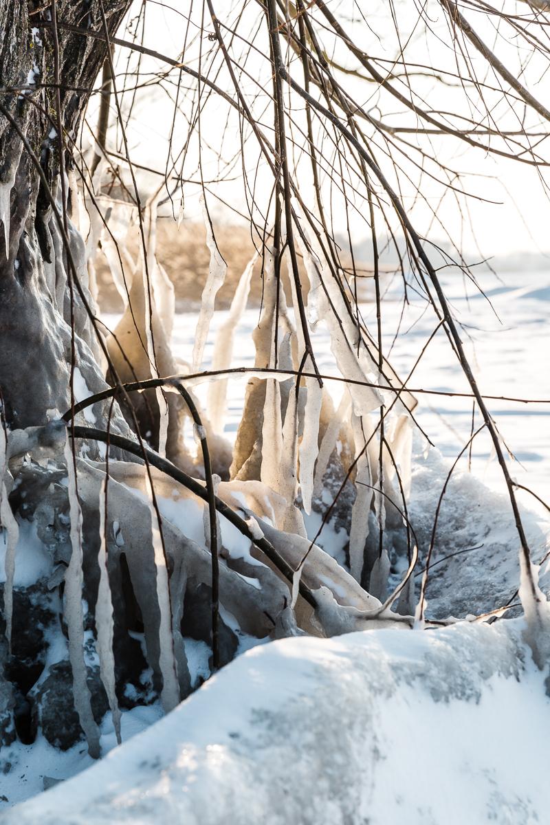 Somogy megye, Fonyód, Balaton, Vasmegye, Zalamegye, Balatonberény, Balatonszentgyörgy, Tél, fagyás, jég, jégcsap, Fülöp Péter, Körmend, fotográfus_ 3G7A0208-3.jpg