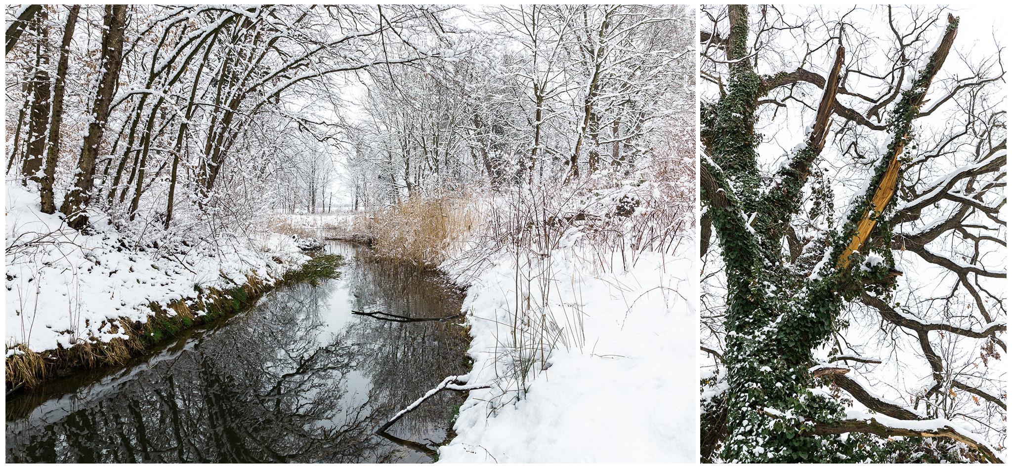 Körmend,Várkert,tél,2018,Fülöp Péter, fylepphoto, Vasmegye, Dunántúl_003.jpg