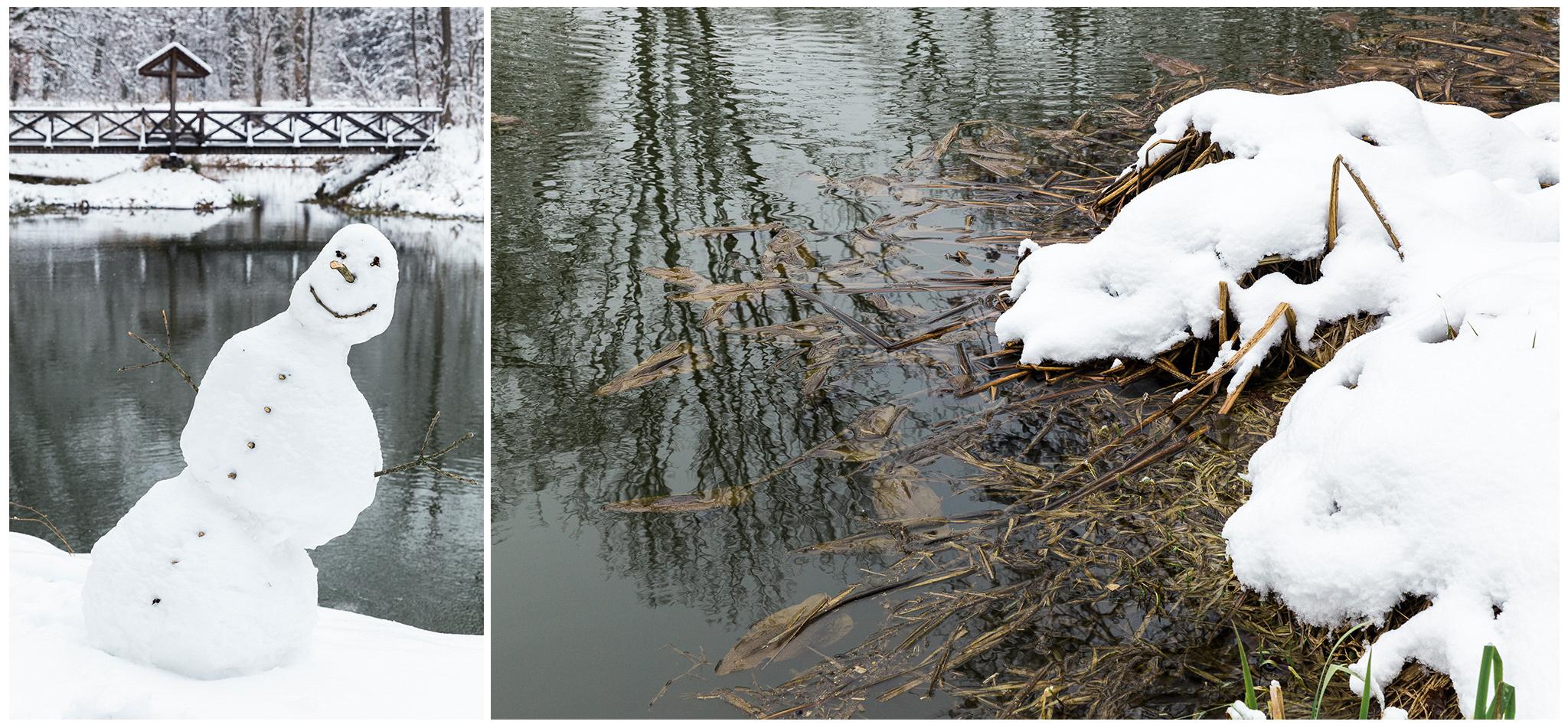 Körmend,Várkert,tél,2018,Fülöp Péter, fylepphoto, Vasmegye, Dunántúl_006.jpg