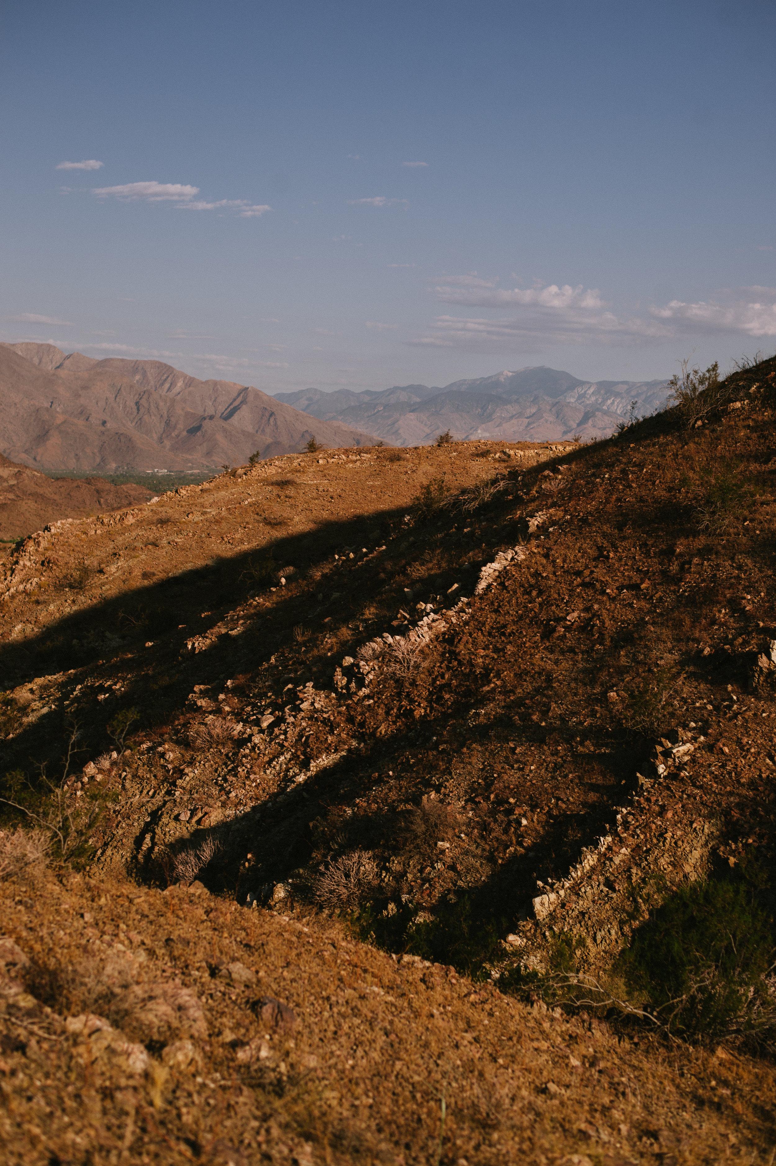 The-Glossier-Palm-Springs-CA-19.jpg