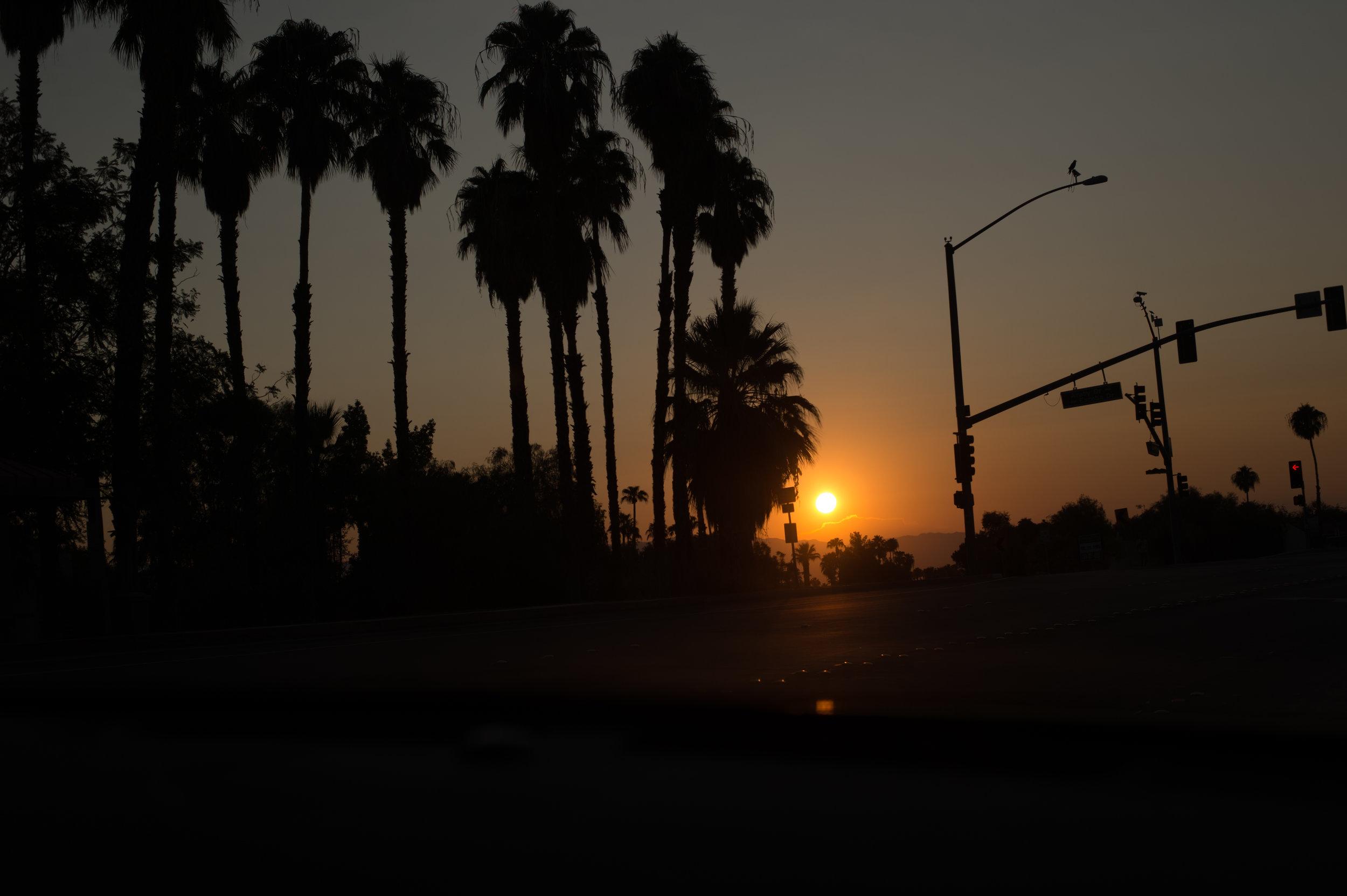 The-Glossier-Palm-Springs-CA-1.jpg
