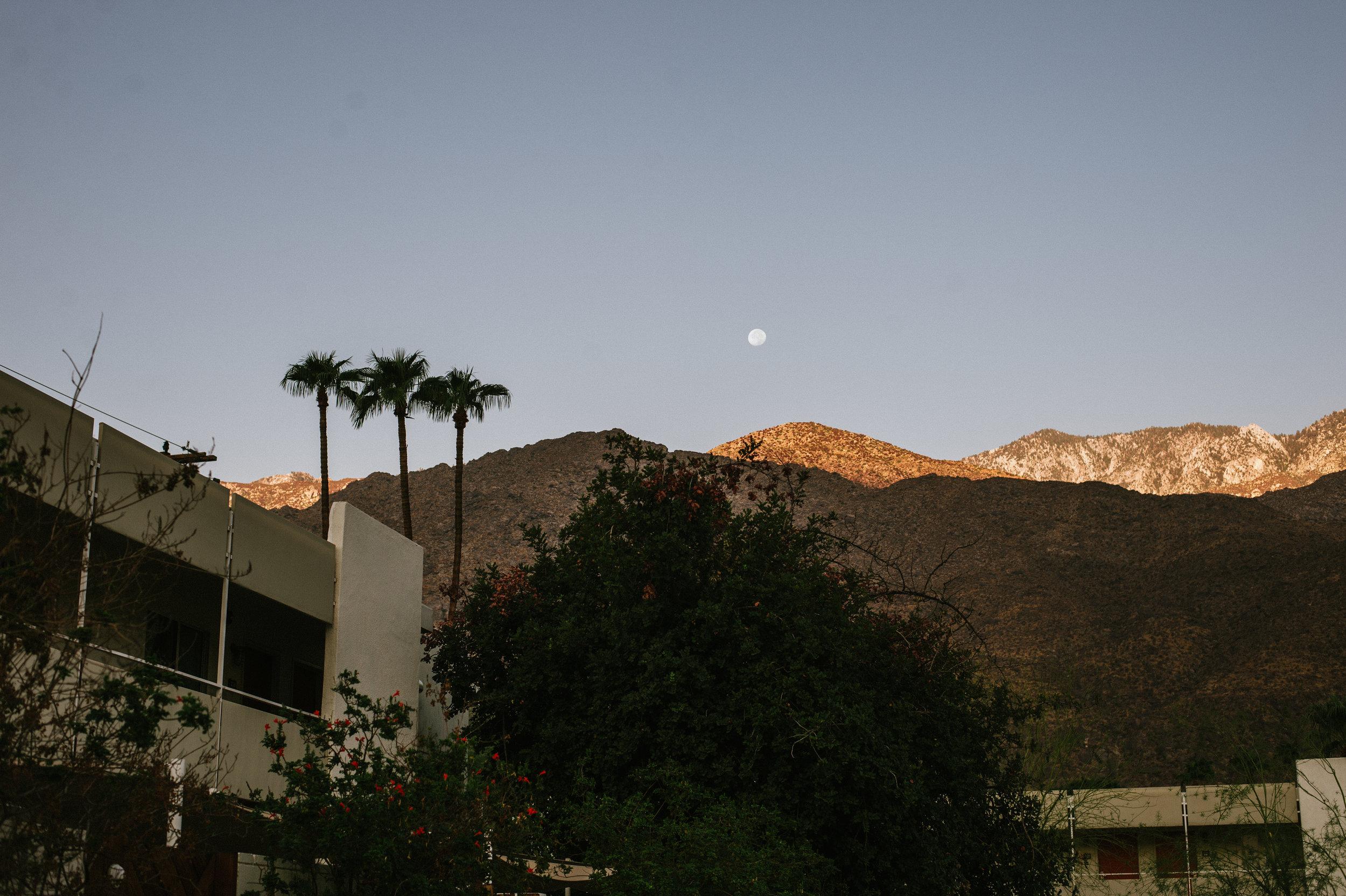 The-Glossier-Palm-Springs-CA-55.jpg