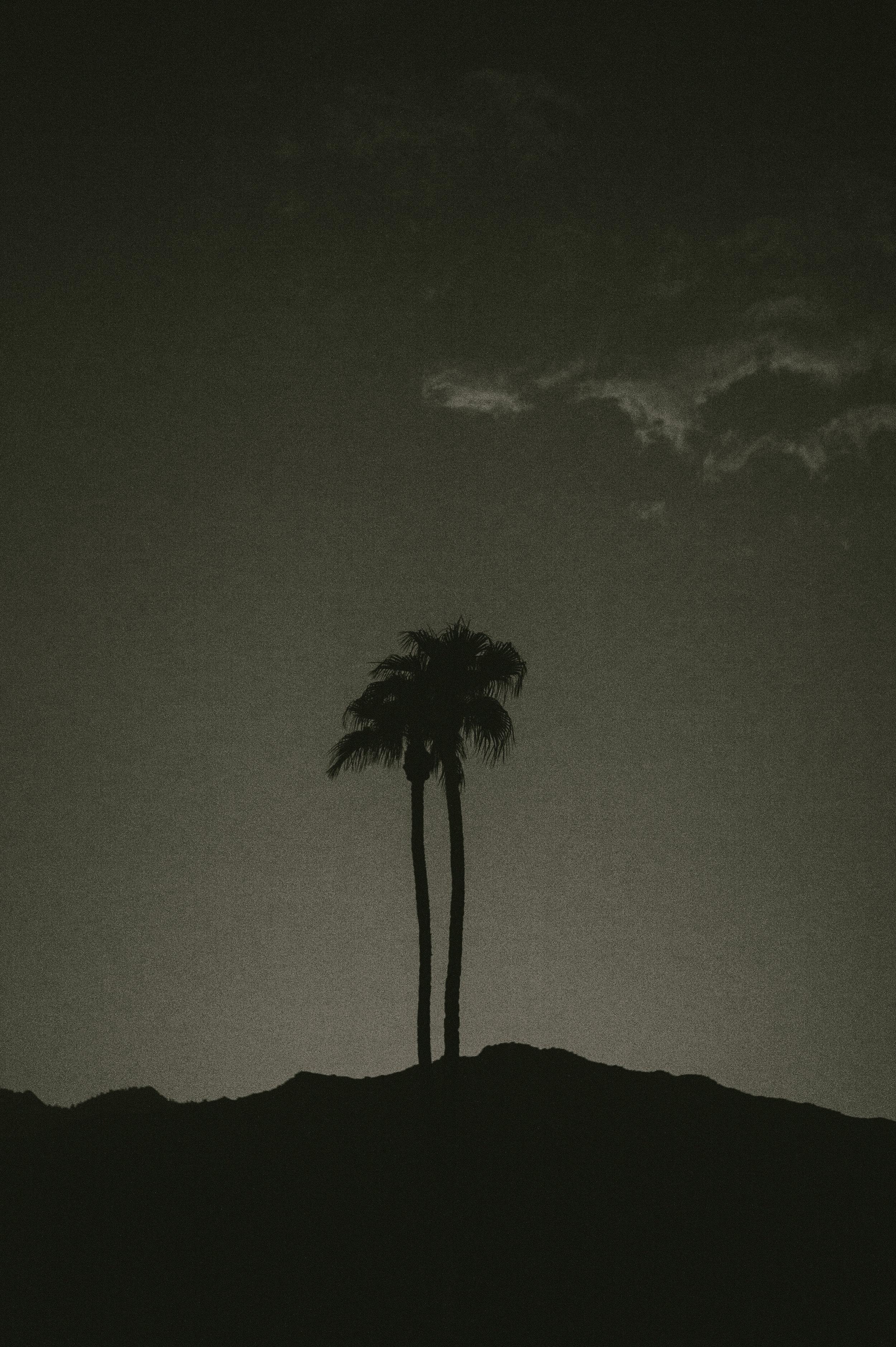 The-Glossier-Palm-Springs-CA-51.jpg