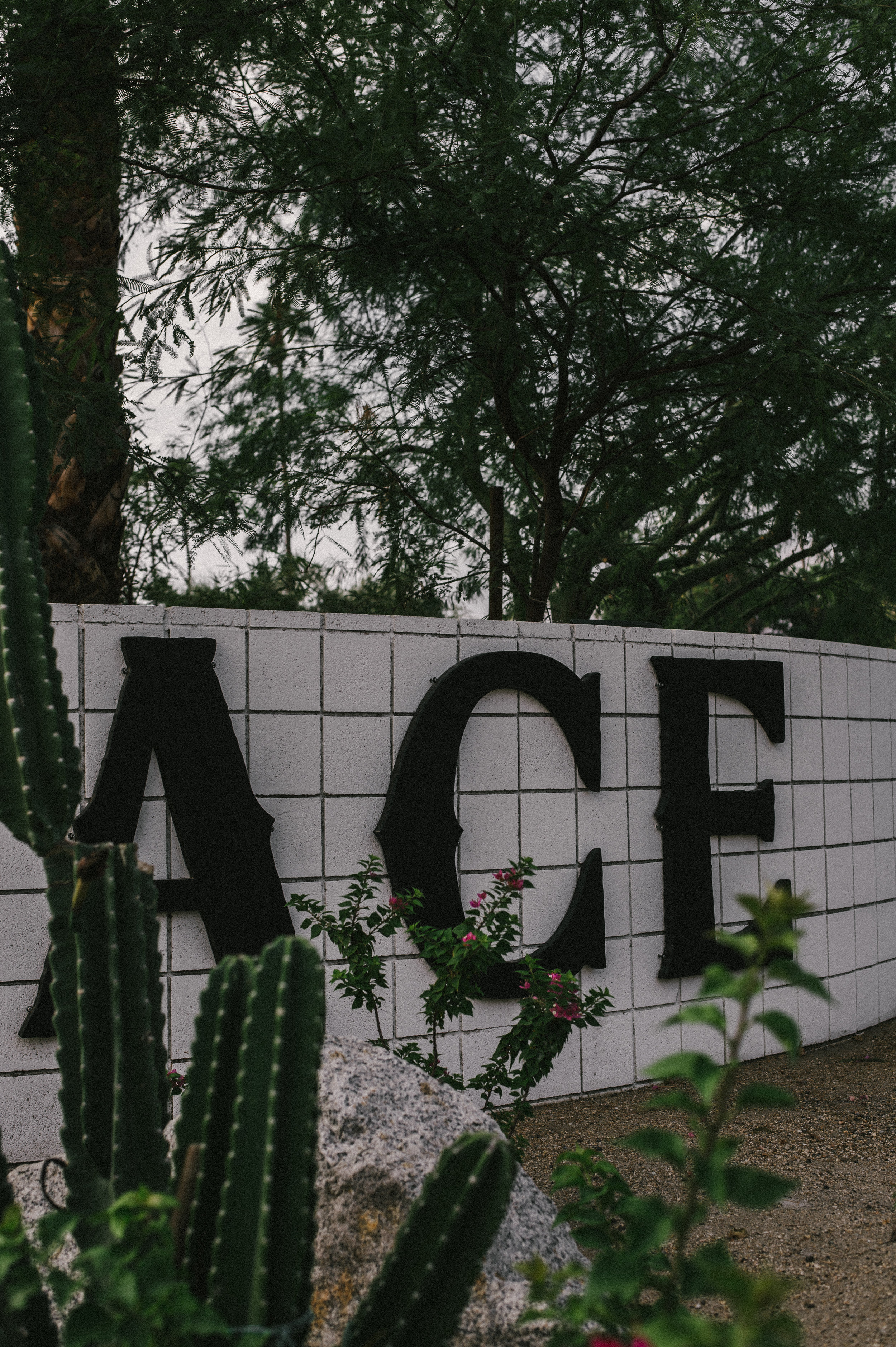 The-Glossier-Ace-Hotel-Palm-Springs-CA-37.jpg