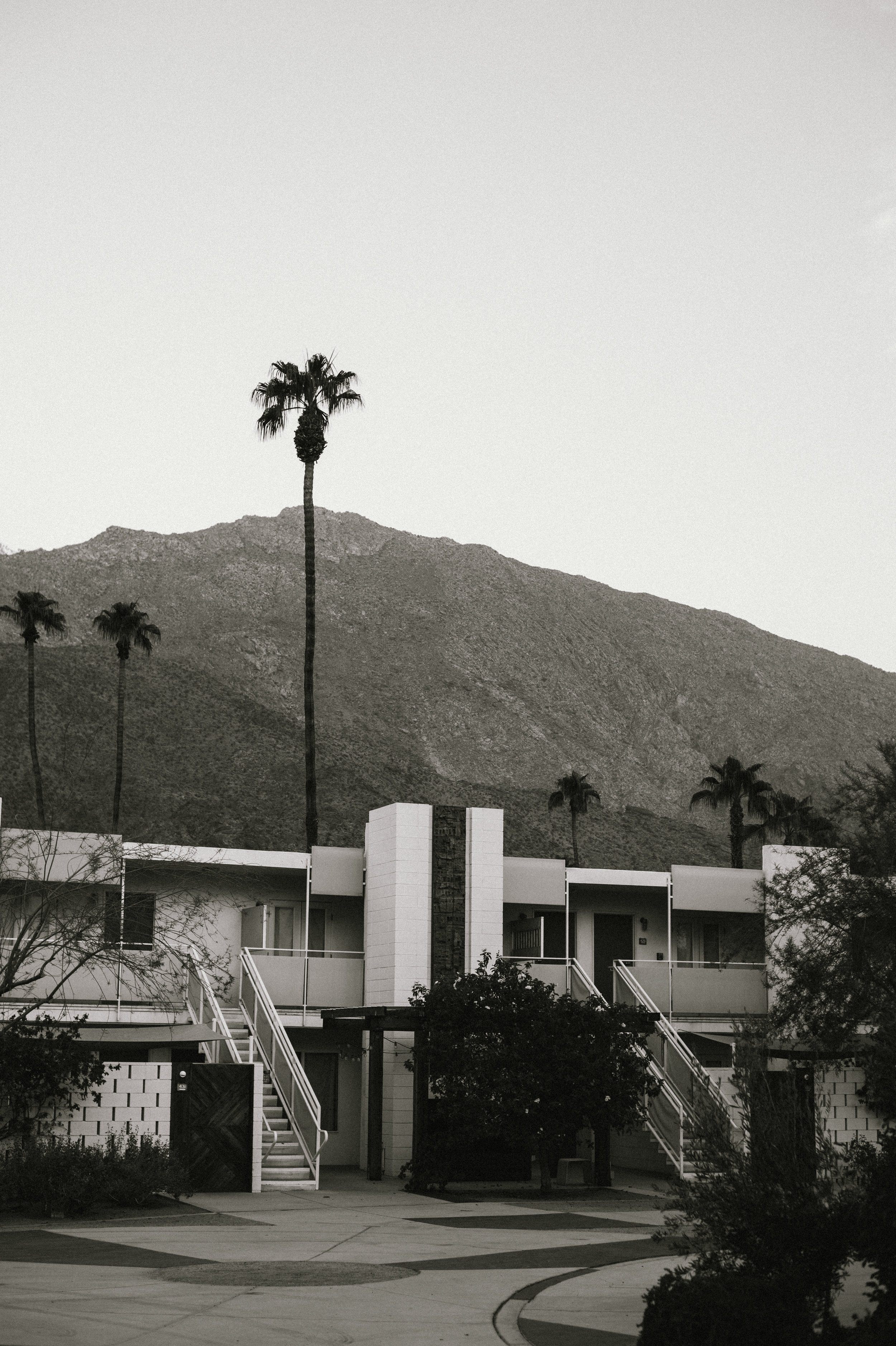 The-Glossier-Ace-Hotel-Palm-Springs-CA-4.jpg