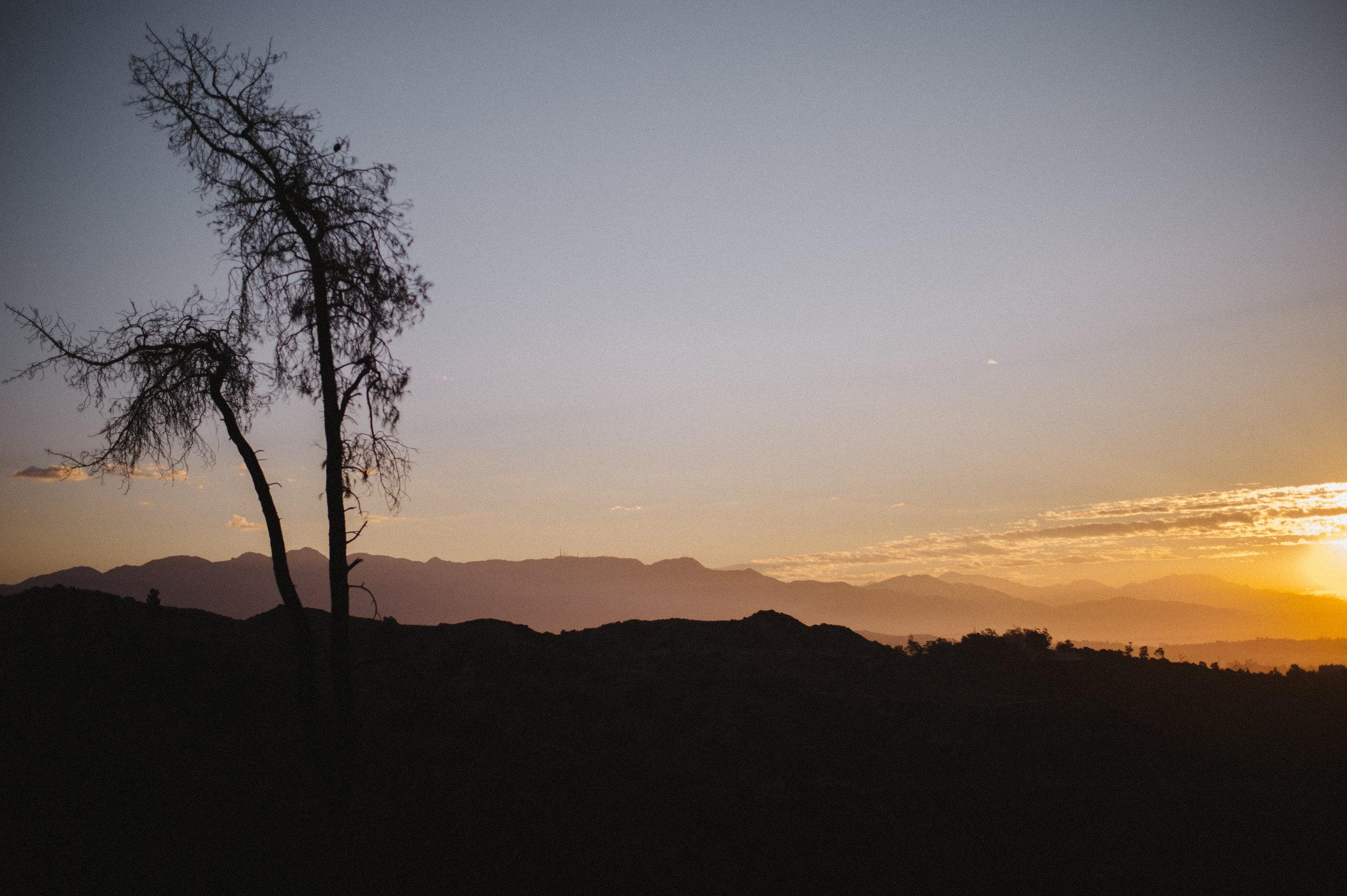 LA-Los-Angeles-Photo-Diary-The-Glossier-47.jpg