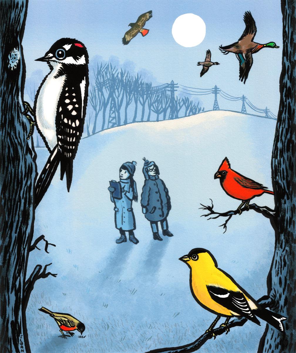 A family birding adventure.