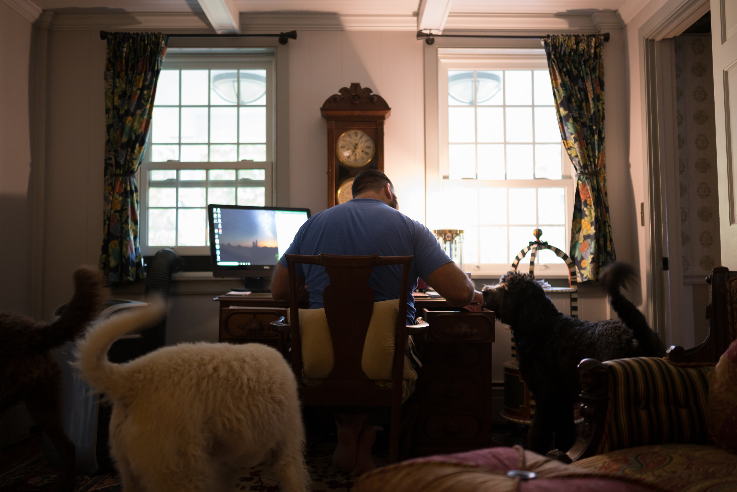 "The three dogs race around the den as Tom sits down to do some work. While every moment may not be spent searching, their future family is always on Tom and Sean's minds. ""It's not a matter of if, it's a matter of when,"" Tom said."