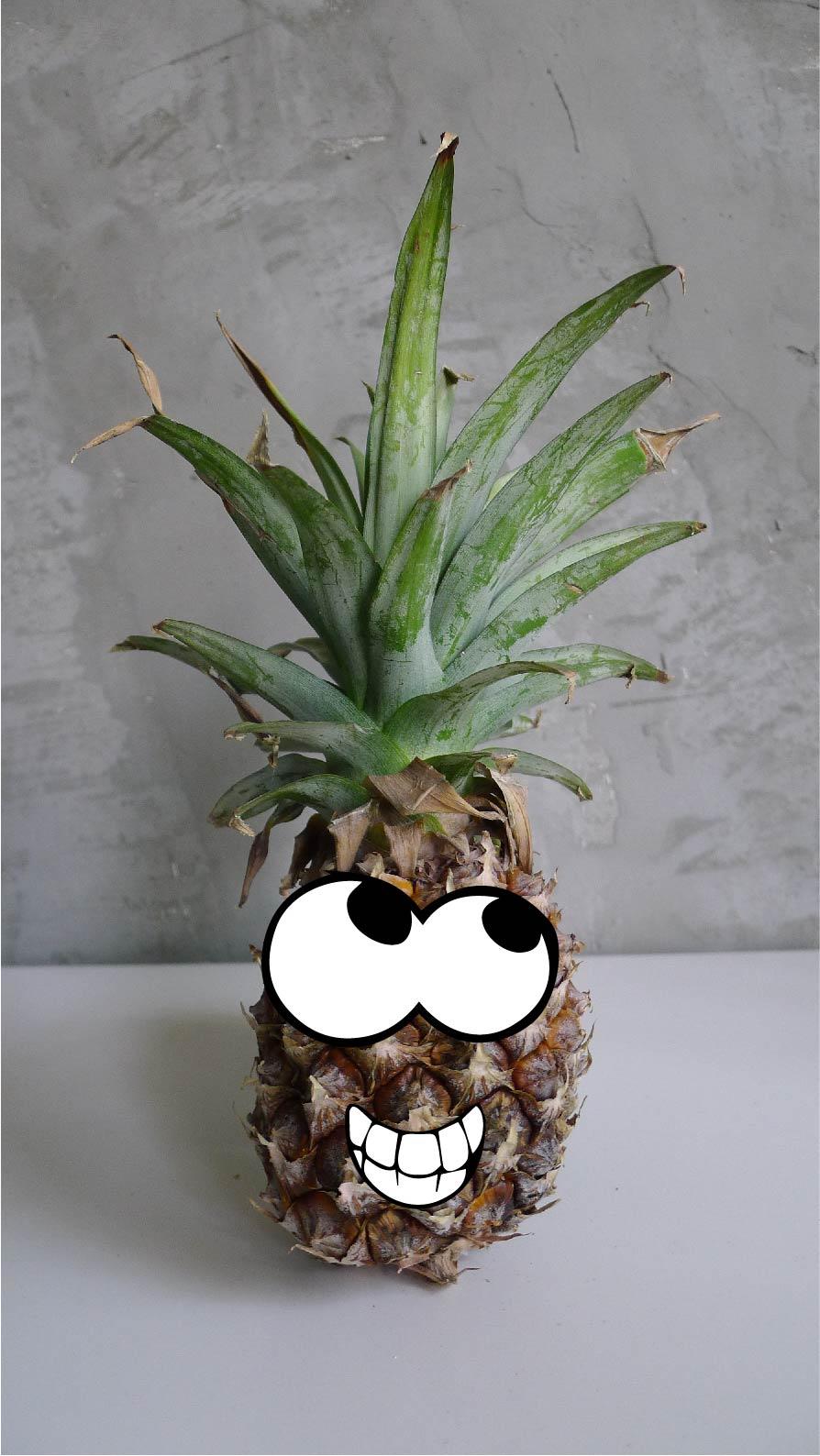I'm Mr. Ananas!