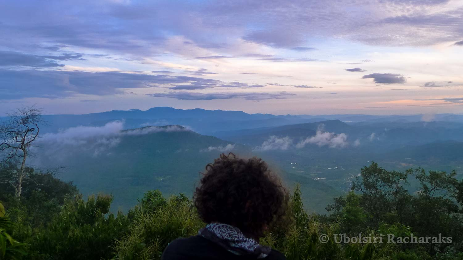Person Looking at the Valley Below from Phu Ruea