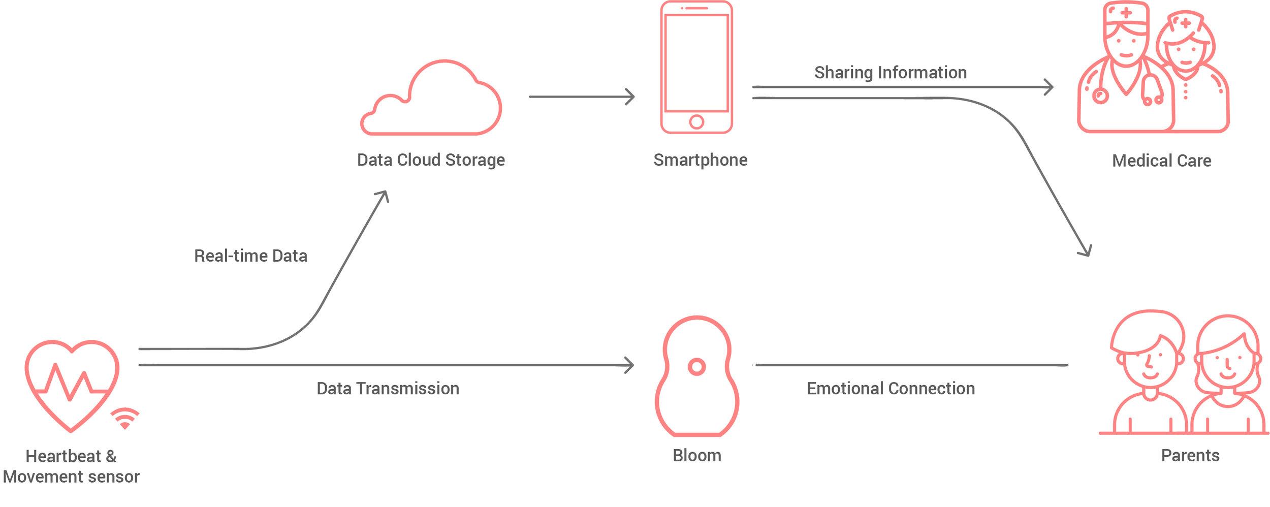 Bloom eco system.jpg