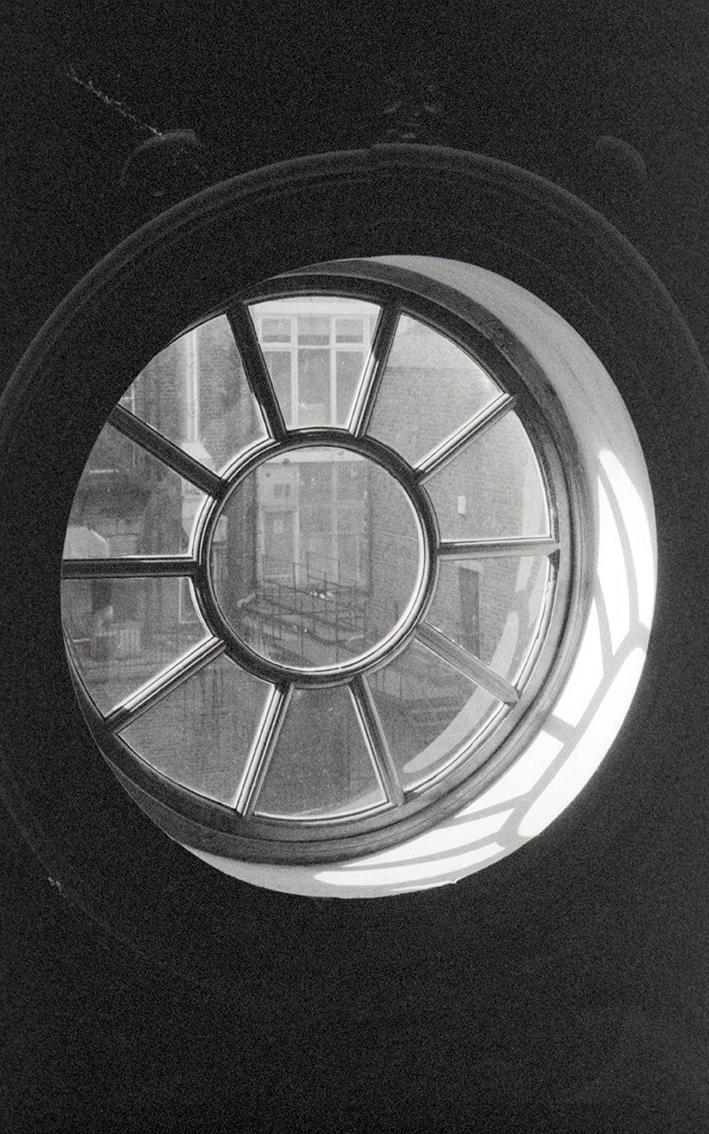 windowroseweb.jpg