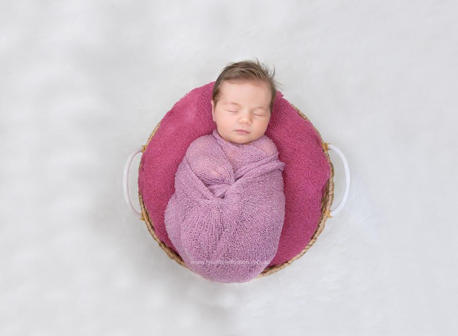 IMG_3464 web Angel Pukallus Newborn Lynette Wilkinson Photography.jpg