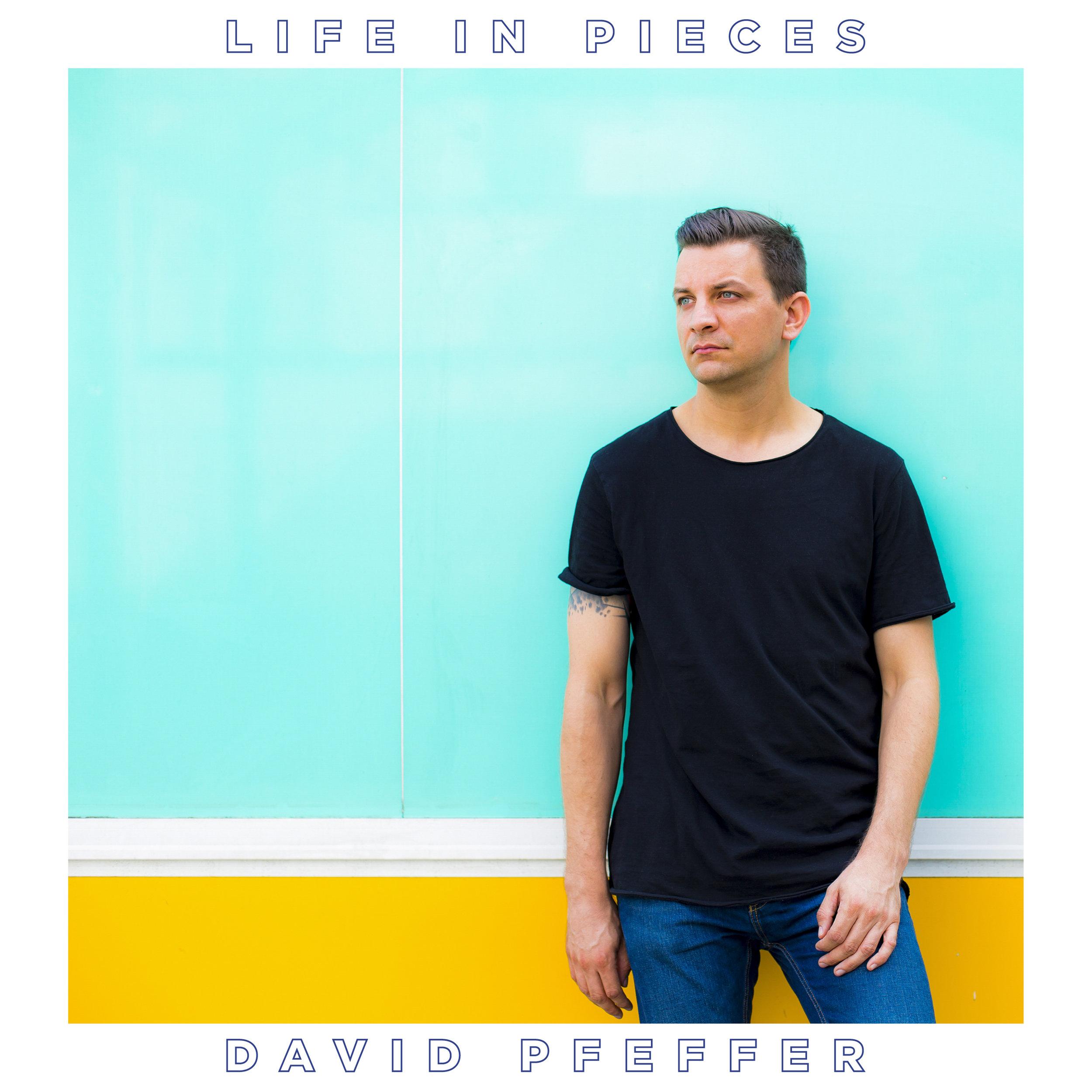 DP_LifeInPieces_Cover.jpg