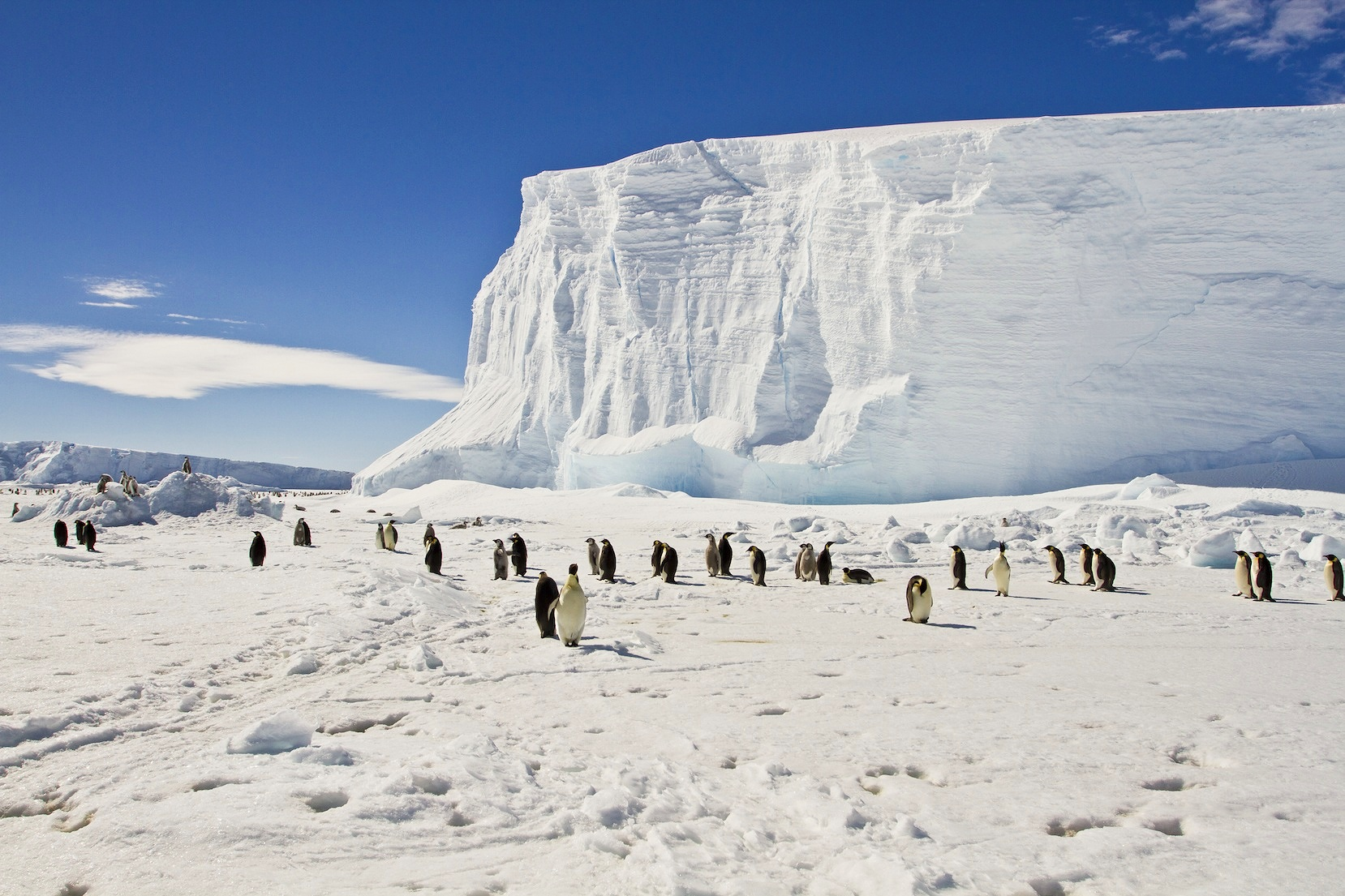 EAST ANTARCTIC -
