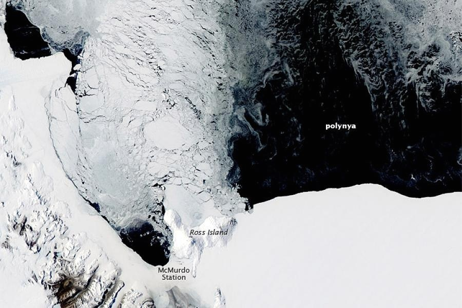 LAST SEAICE AND THE NORTHEAST WATER POLYNYA -