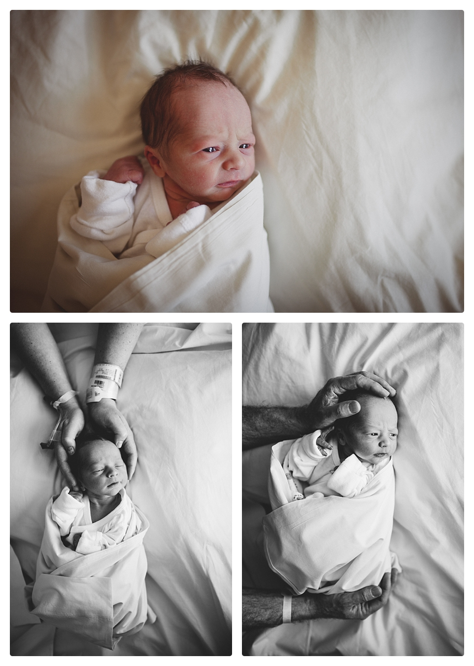 freshie 48 denver newborn hospital photography baby boy