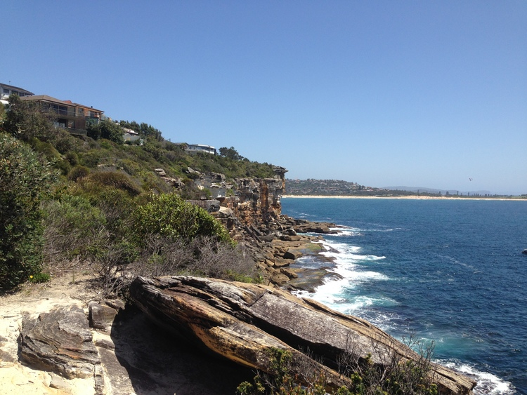 A short nature walk yesterday along the cliffs on the way to the beach