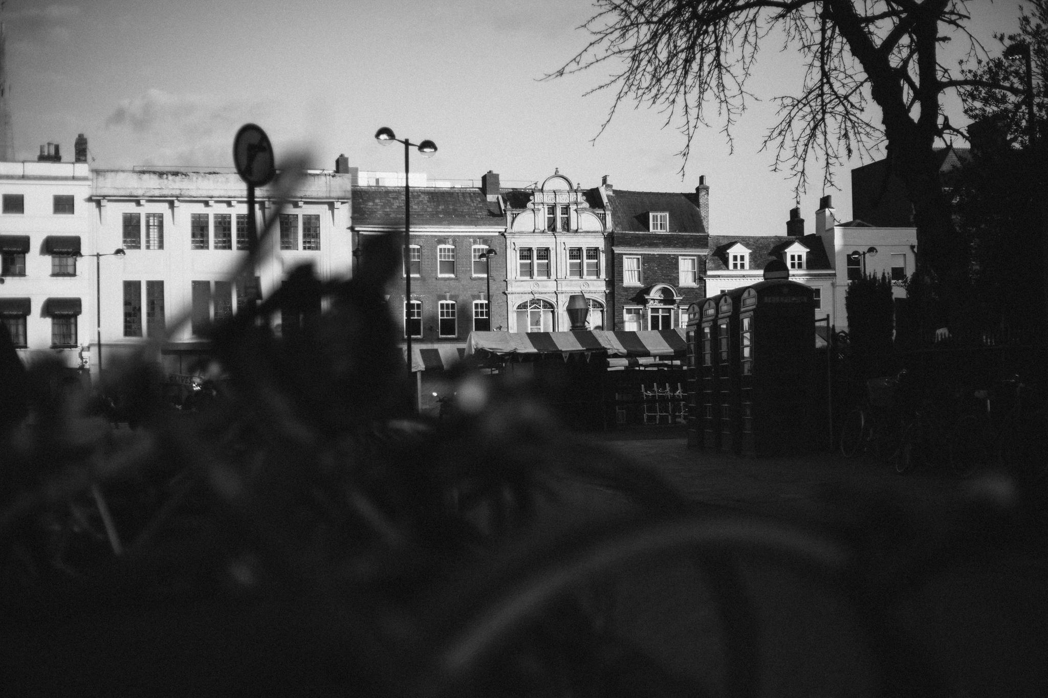 CambridgeTerm2_0026.jpg