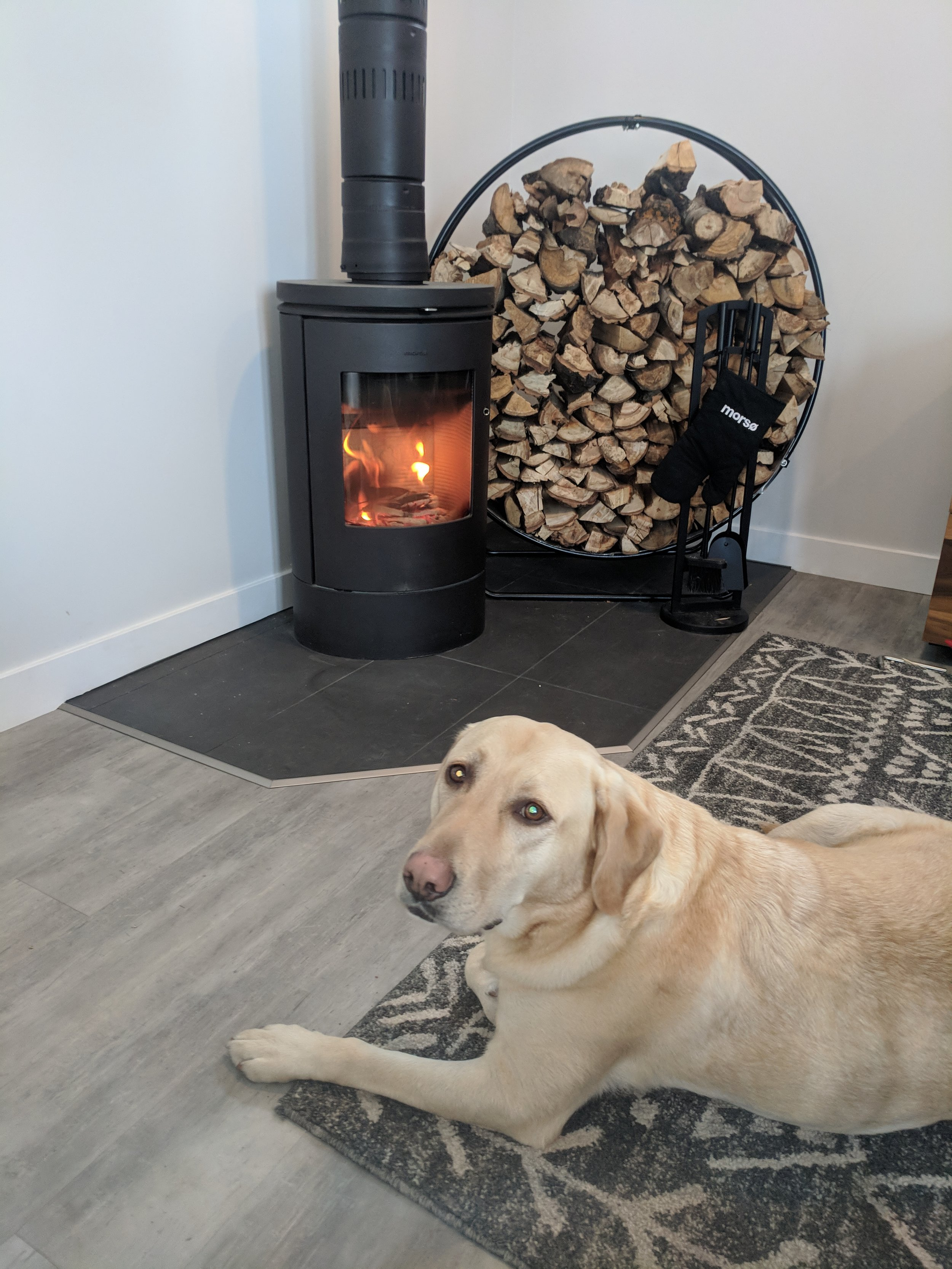 Luna enjoying the heat from our wood stove